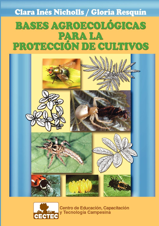 avispa parásita para matar el mosquito del hongo