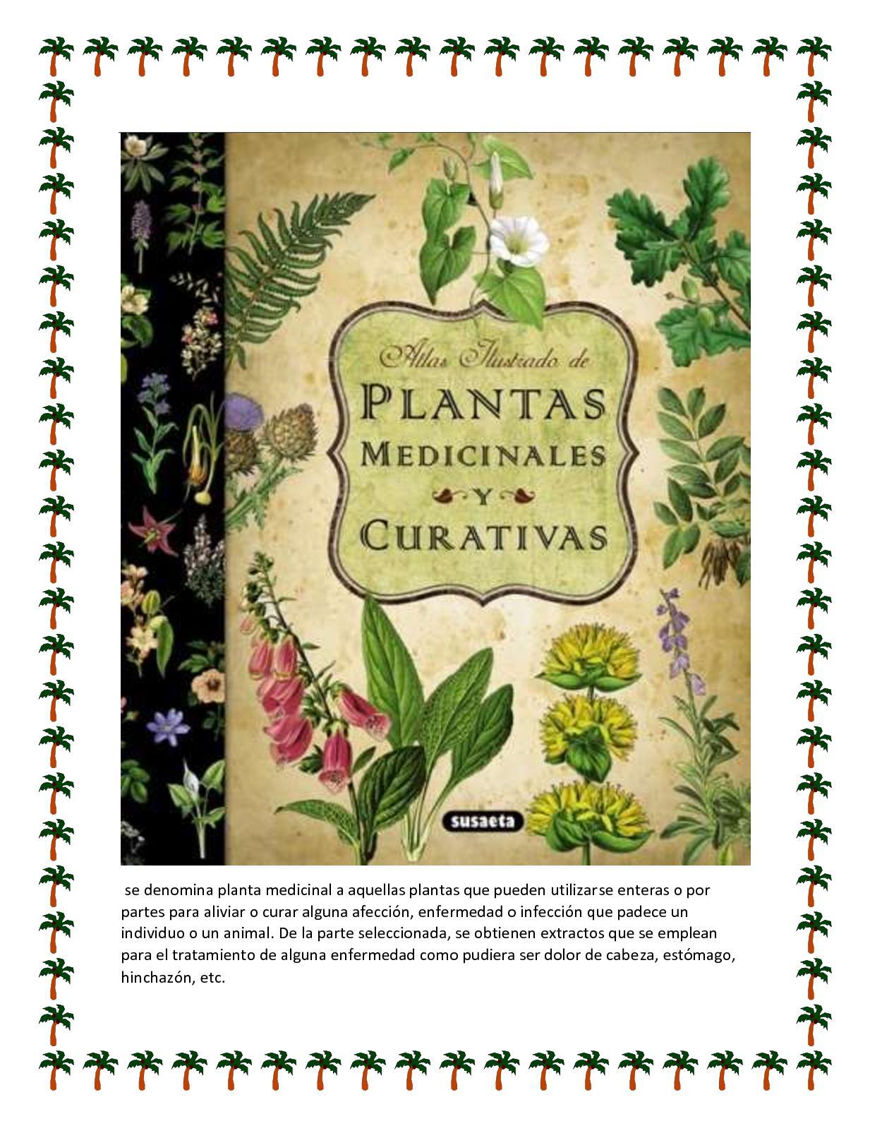 como curar dolor de estomago con plantas medicinales