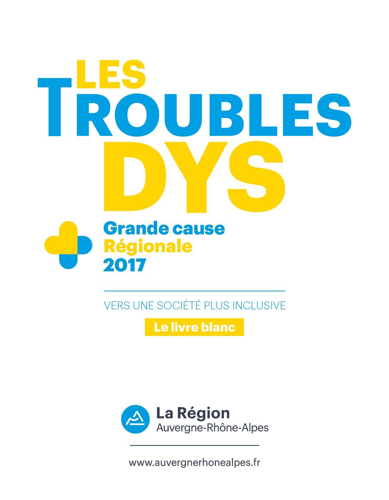 Les  troubles dys - grande cause régionale 2017