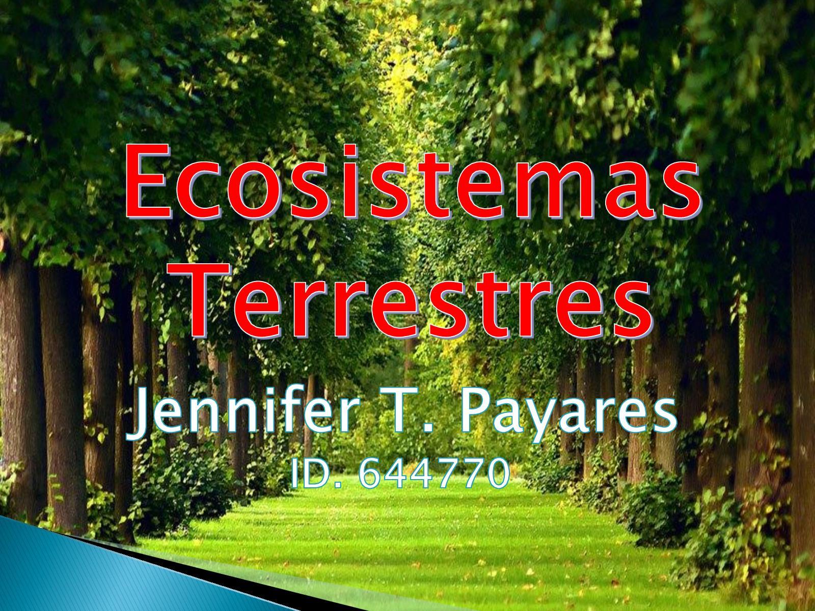 Calaméo - Ecosistemas Terrestres (1)
