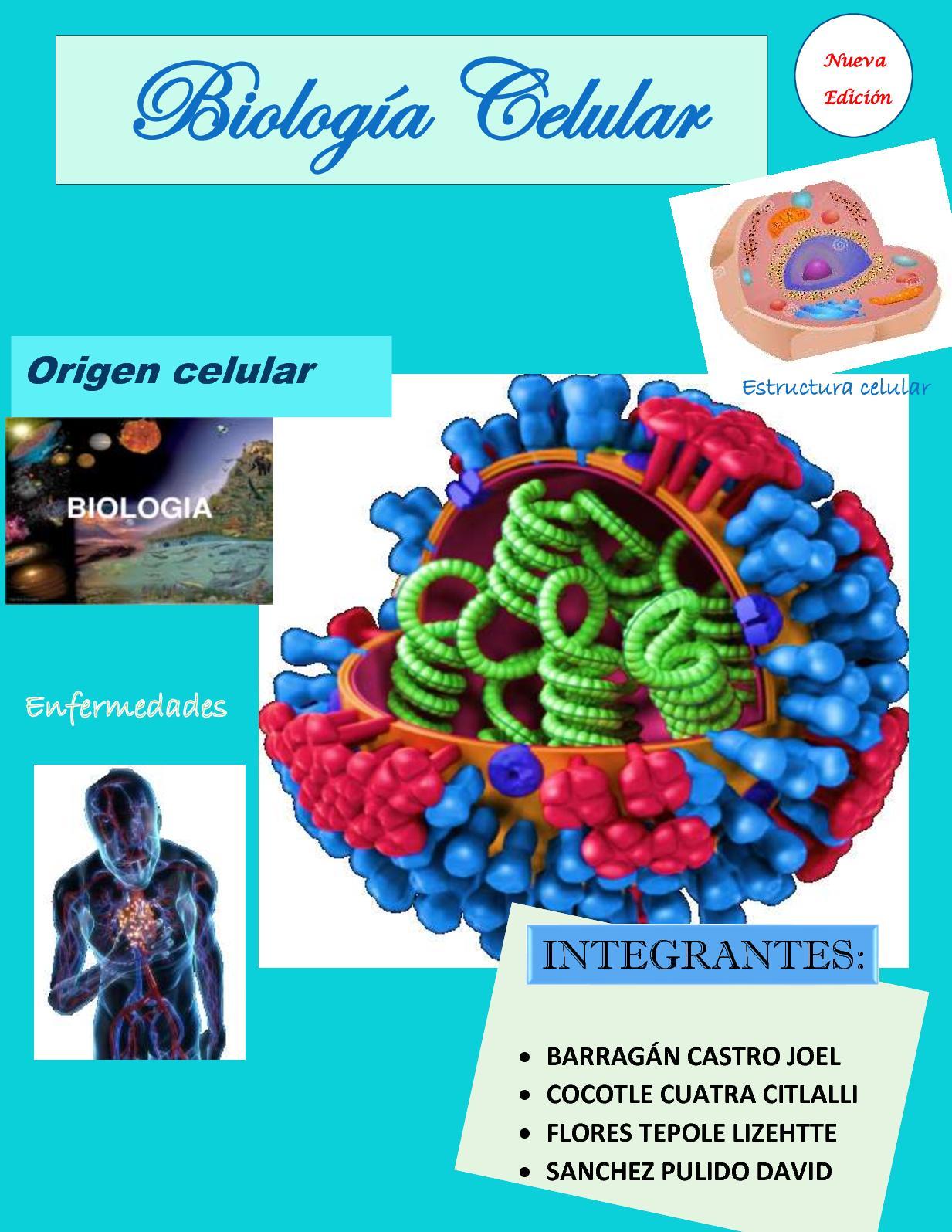 Calaméo Revista Biologia Celular
