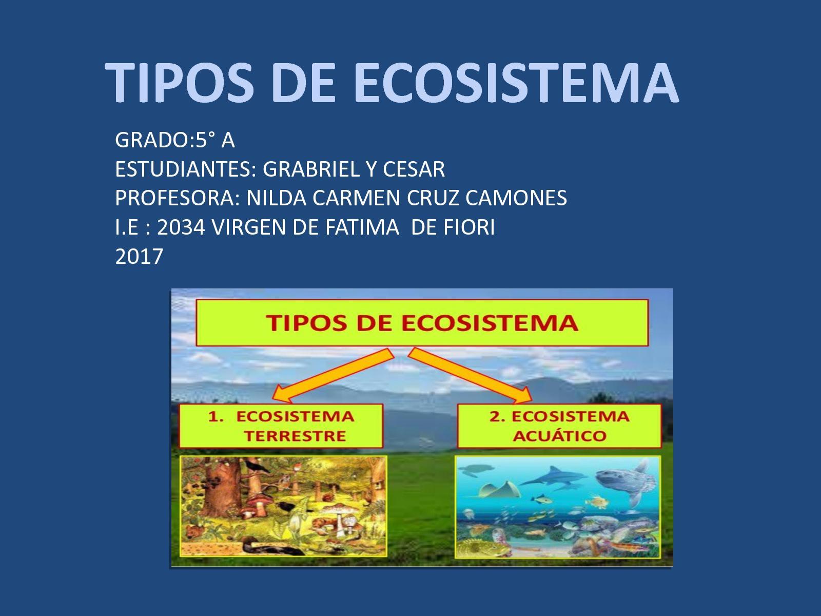 Calaméo Ecosistema Cesar Y Gabriel