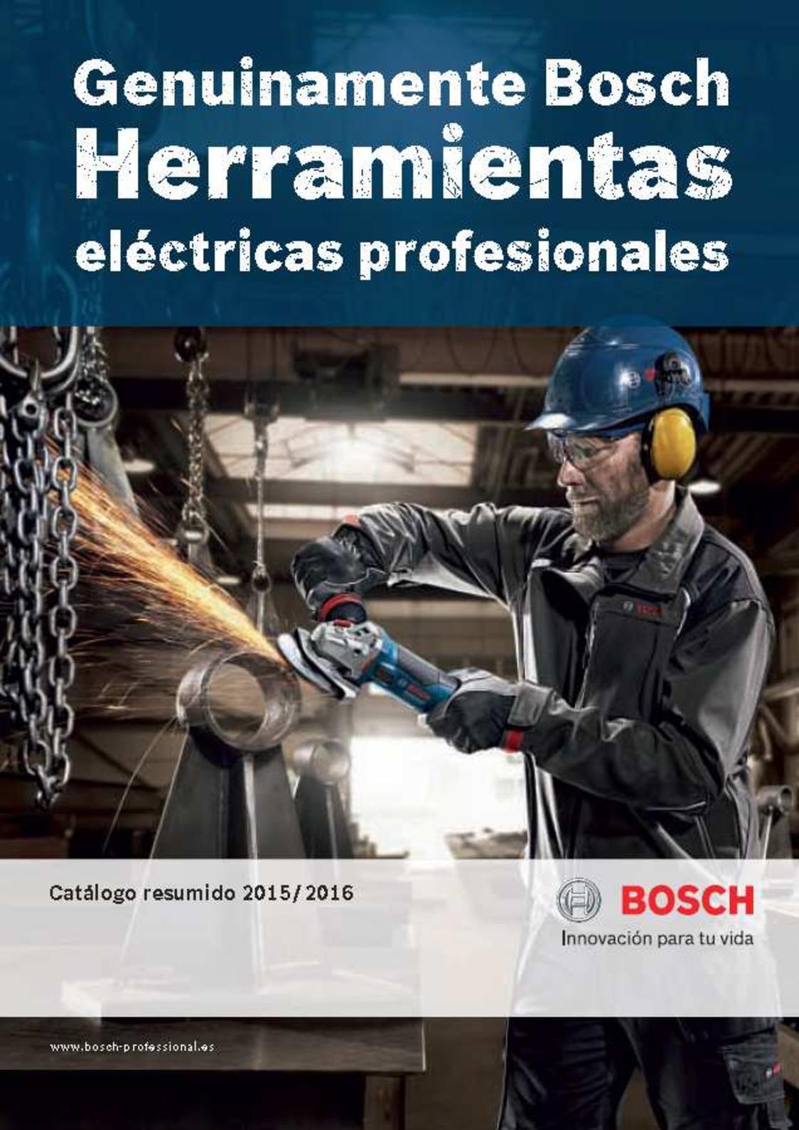 pack de 1 Bosch Professional 2 608 585 602 Bosch 602-Brocas para martillos perforadores SDS-plus-5-6 x 250 x 315 mm gris 0 V 0 W 6 mm x 315 mm