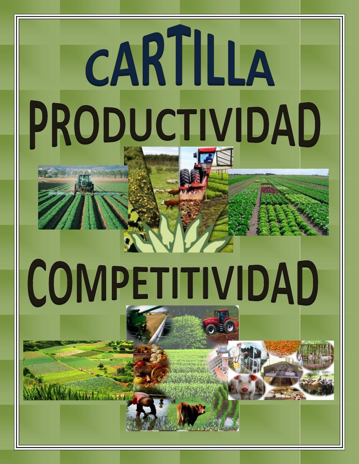 Cartilla Productividad Y Competitividad
