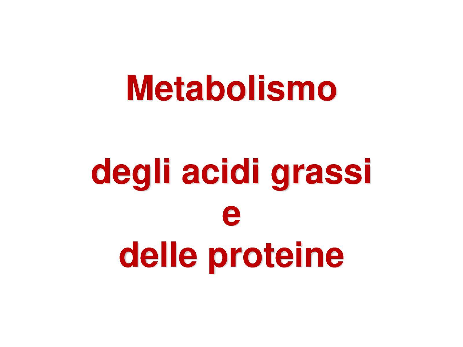 il grasso alimentare può essere convertito in glucosio