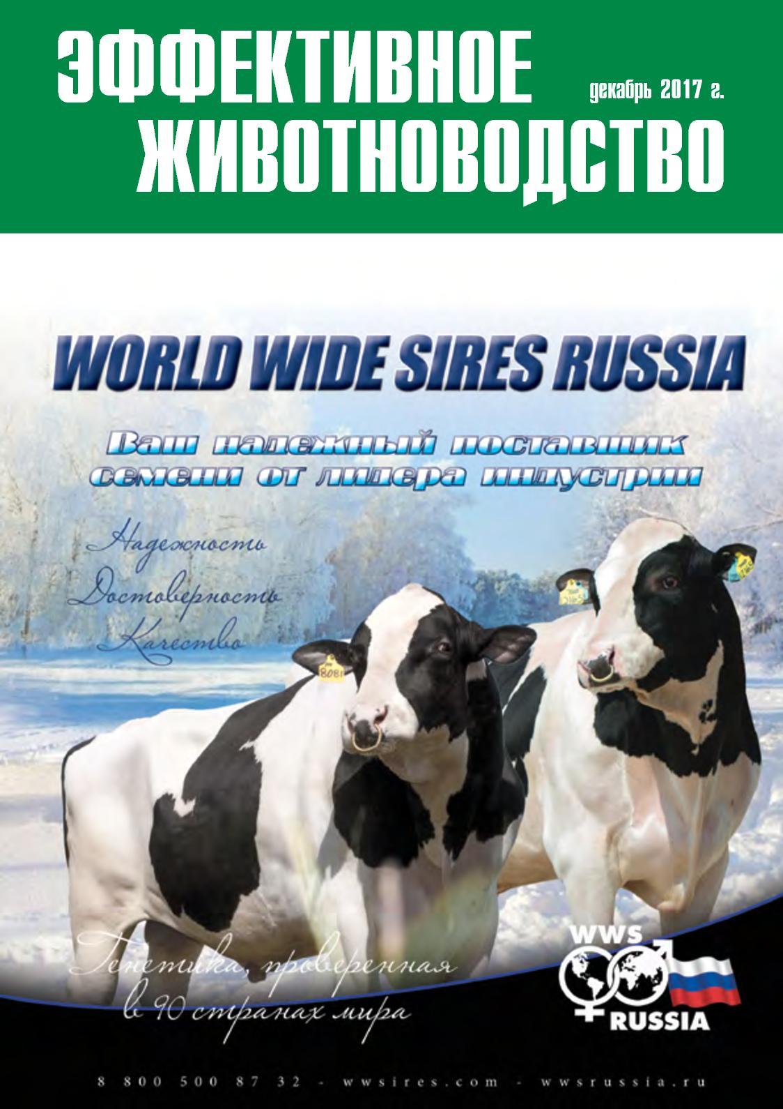 Коровьи дойки точка ком