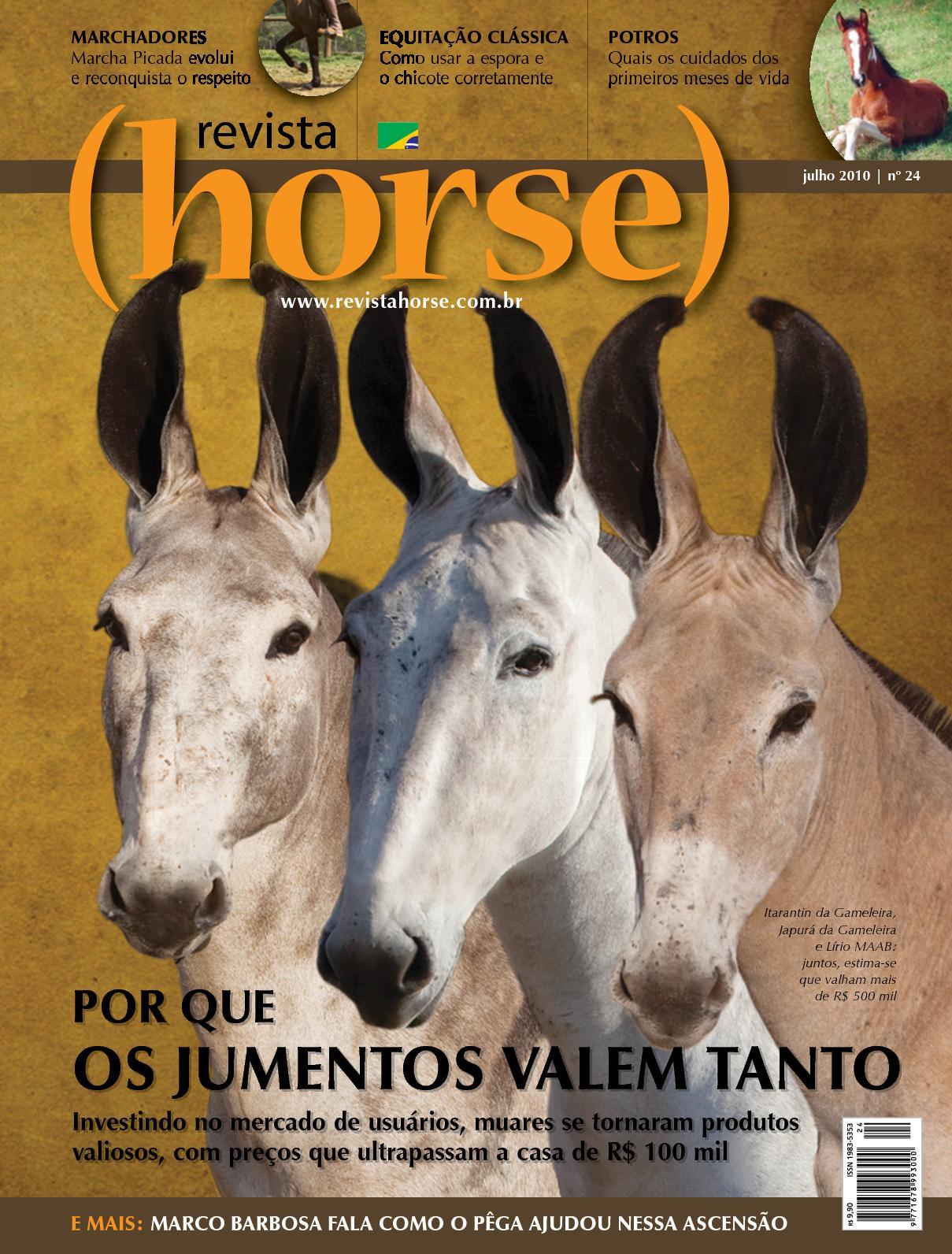 Calaméo - Revista Horse 24 90455dbb152