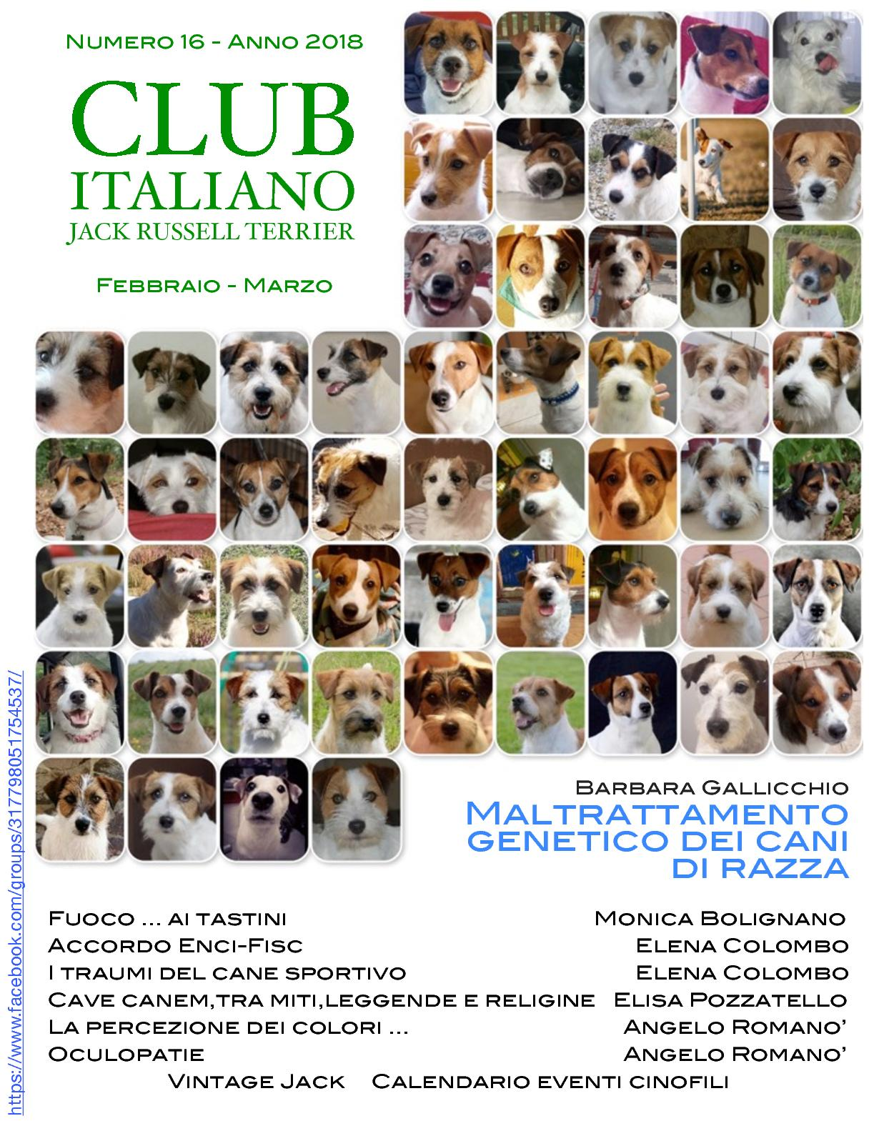 Expocani Calendario.Calameo Club Italiano Jack Russell Terrier N 16 2018