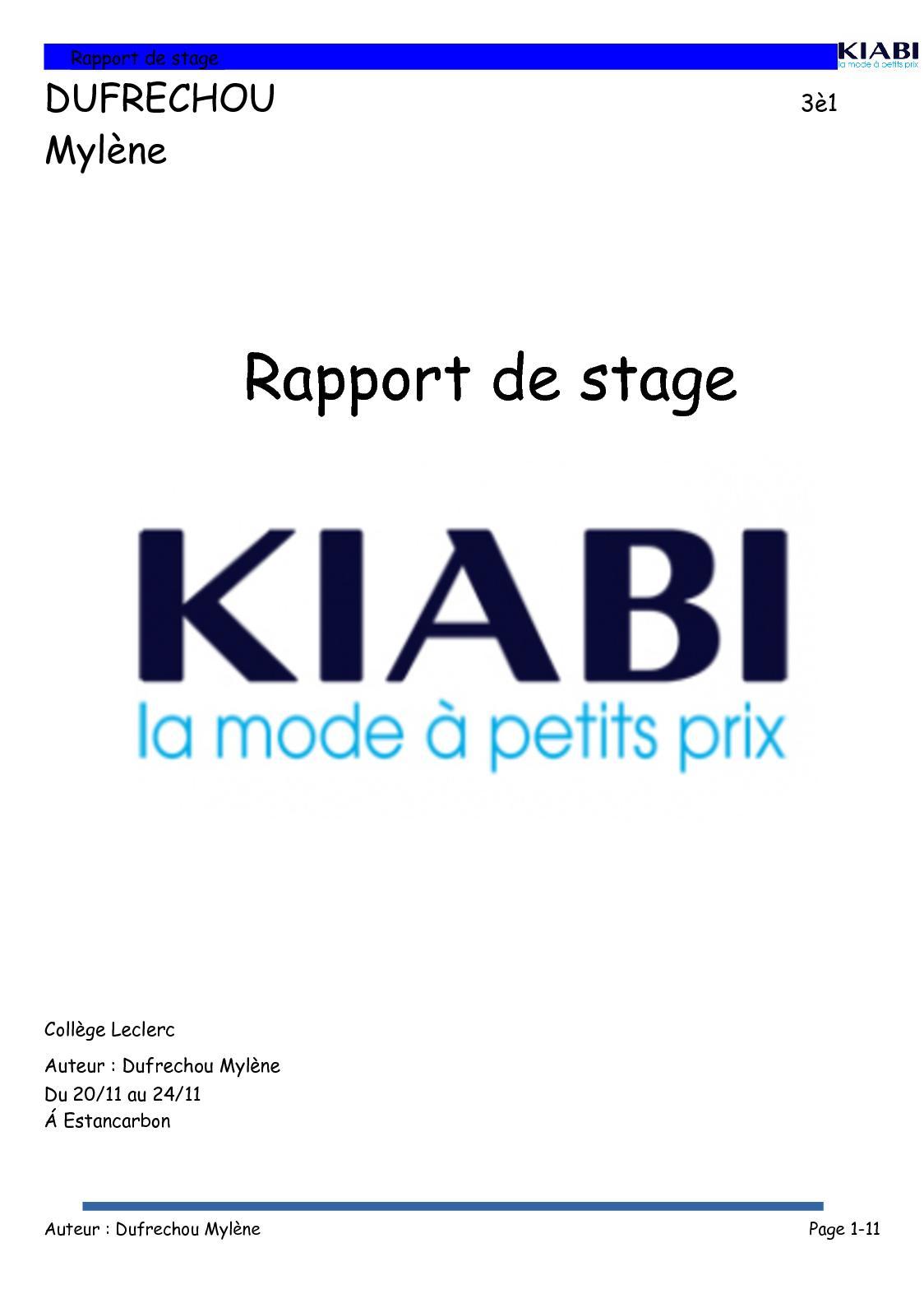 Calaméo Rapport De Stage Mylène Dufrechou