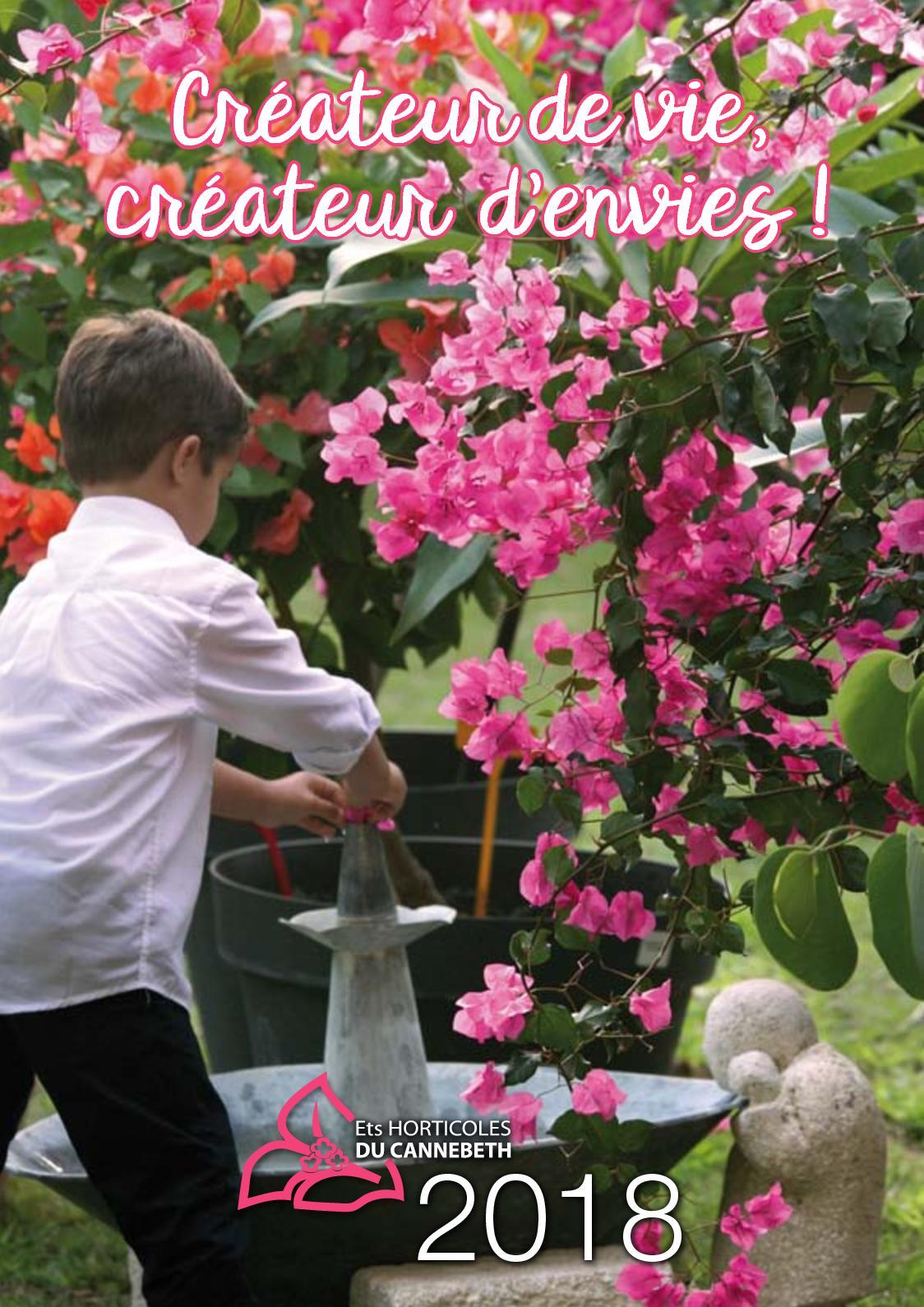 15 graines Fleur-Mélange talent FICOIDE