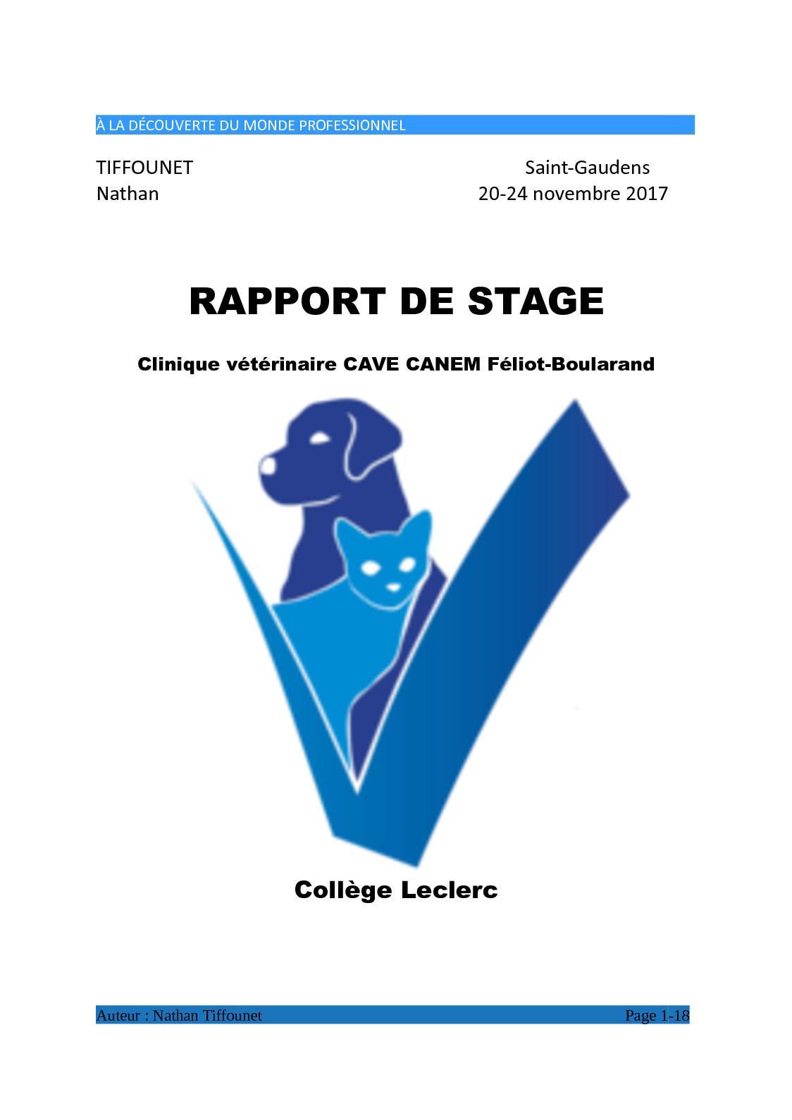 Calaméo Rapport De Stage Tiffounet Nathan