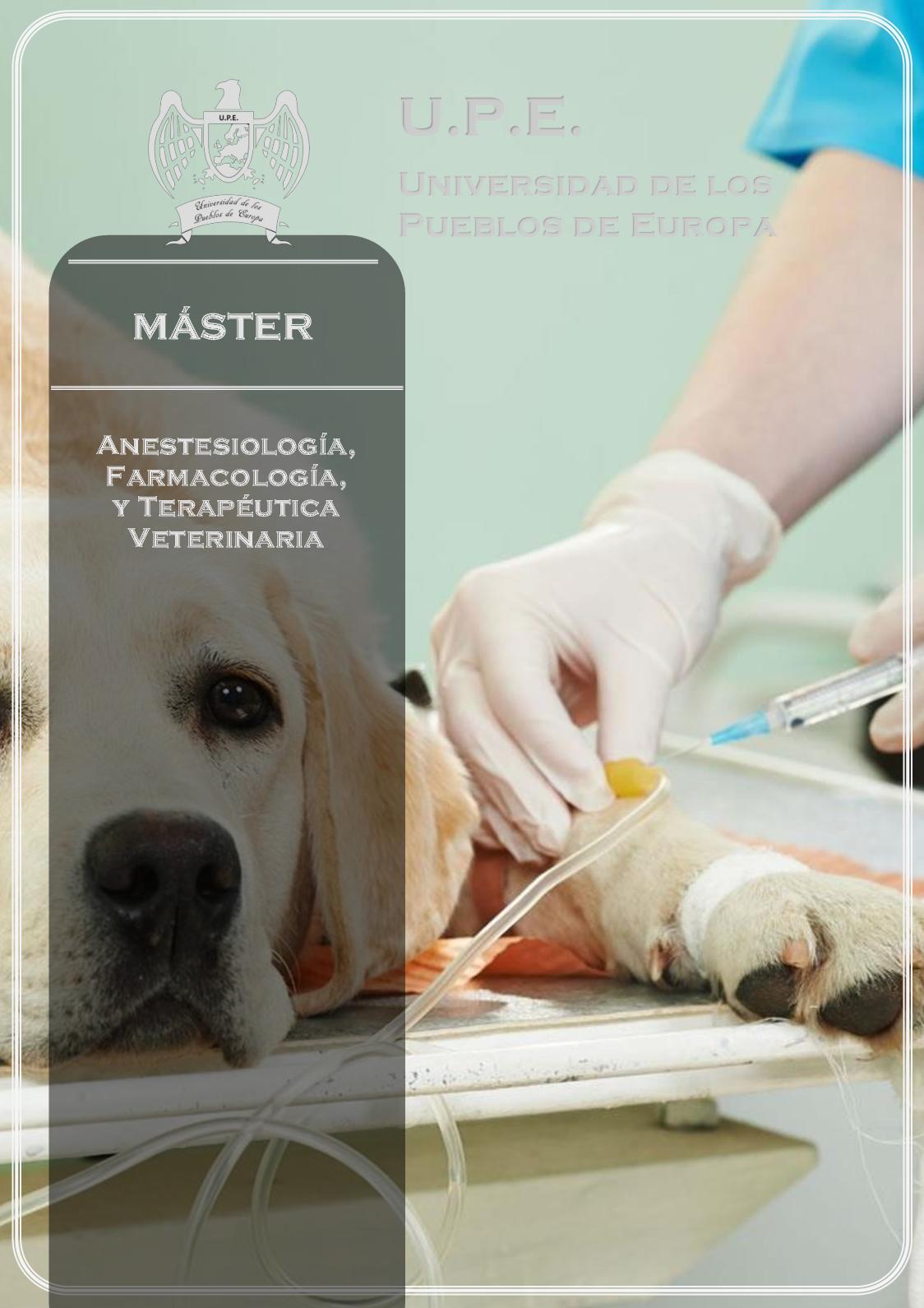 Calaméo Máster En Anestesiología Farmacología Y Terapéutica En Veterinaria