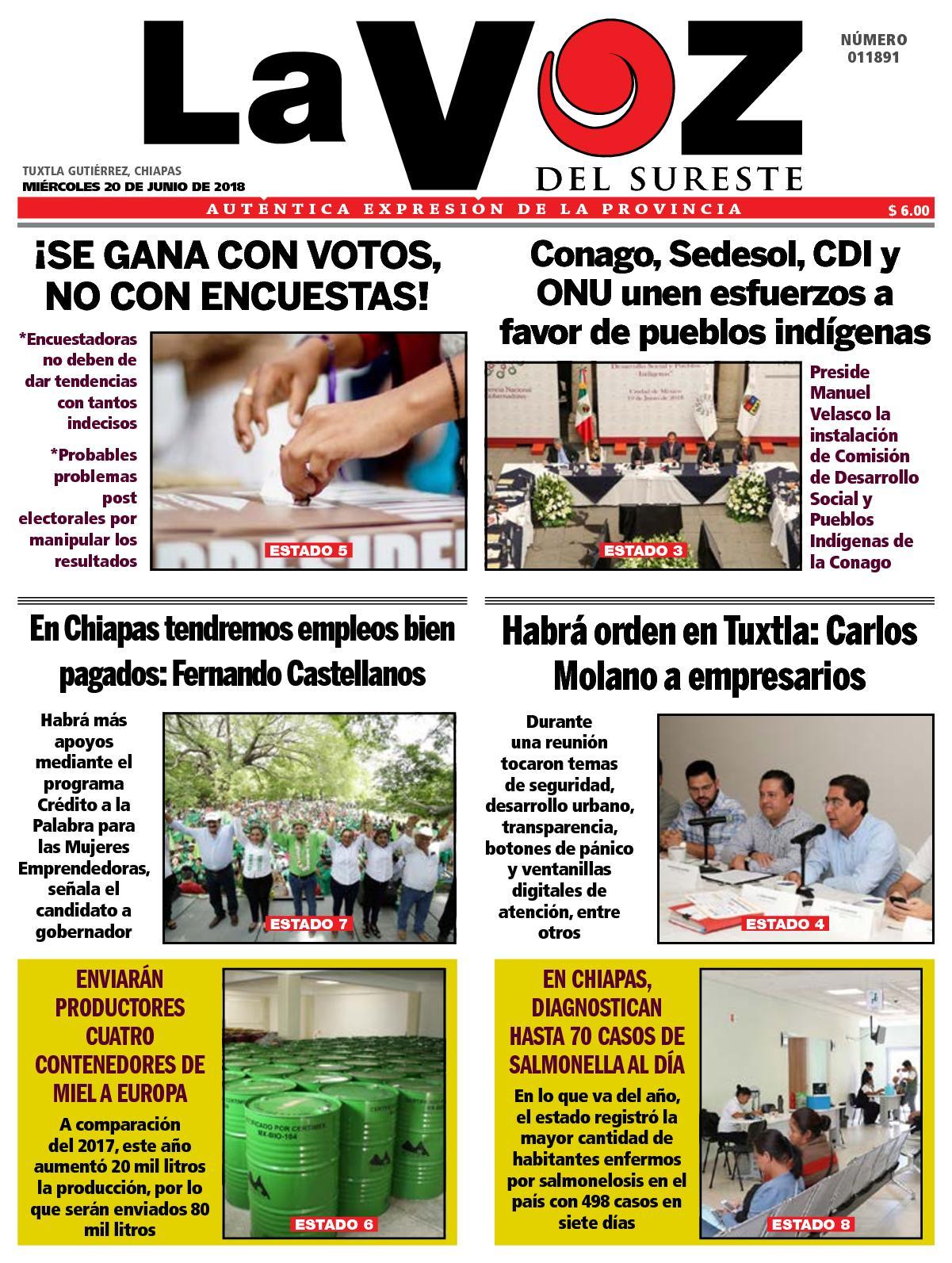 d756cfb4fab25 Calaméo - Diario La Voz del Sureste