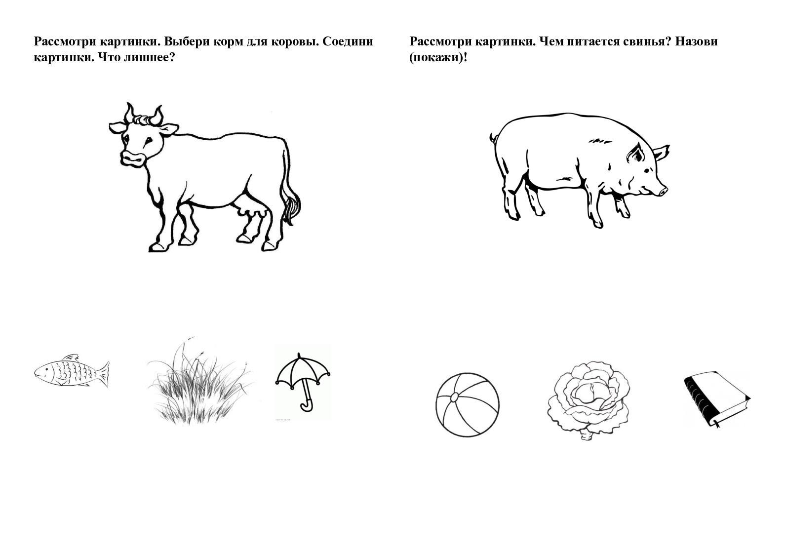 Картинка что ест корова для детей