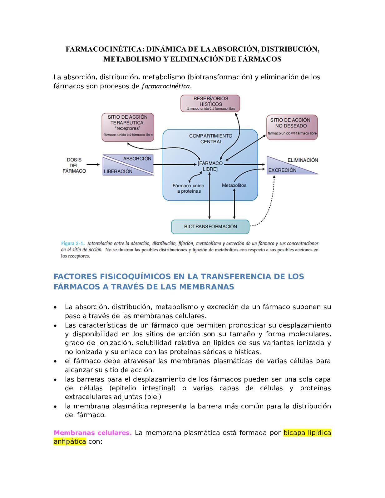 Farmacocinética1