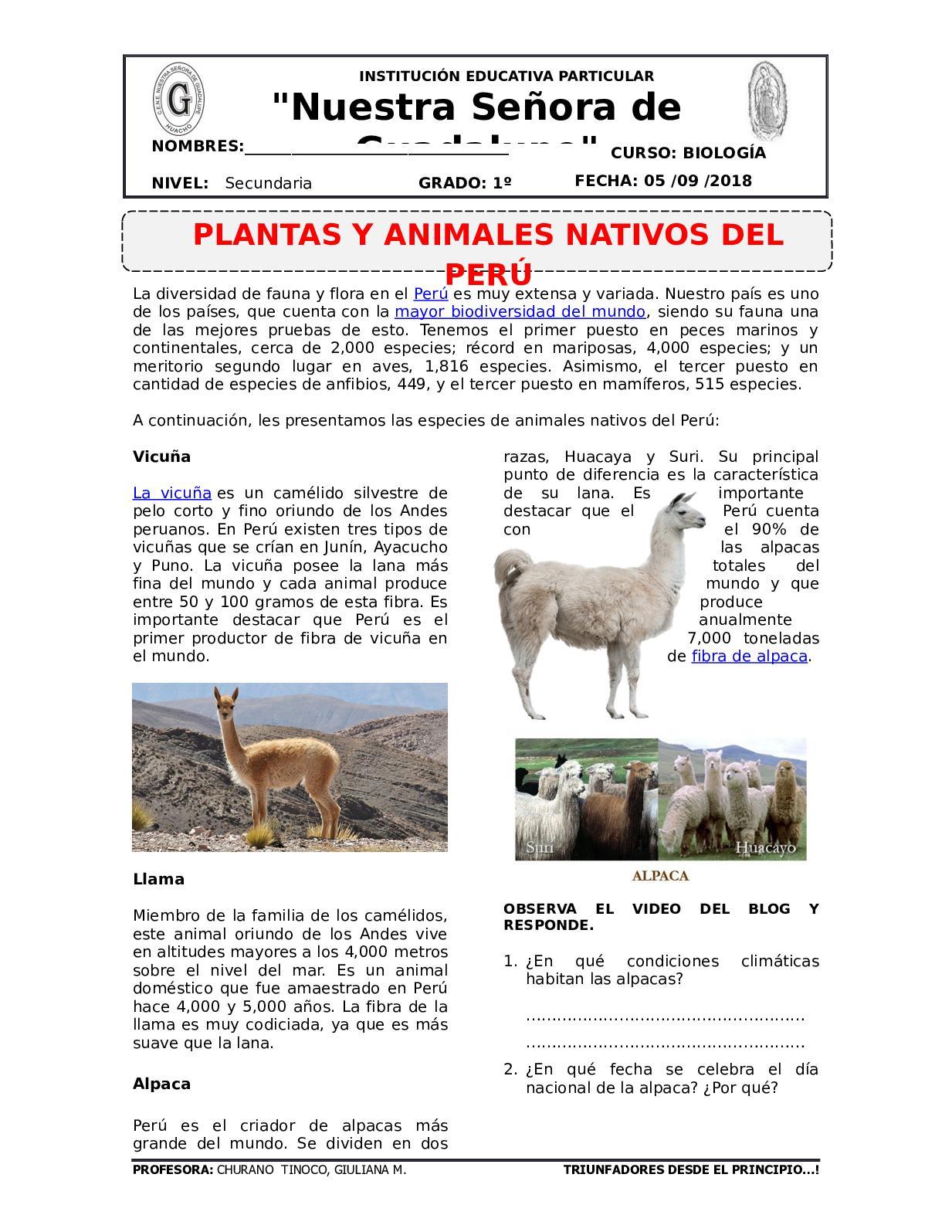 Plan Lector Animales Y Planatas Nativas Del Perú