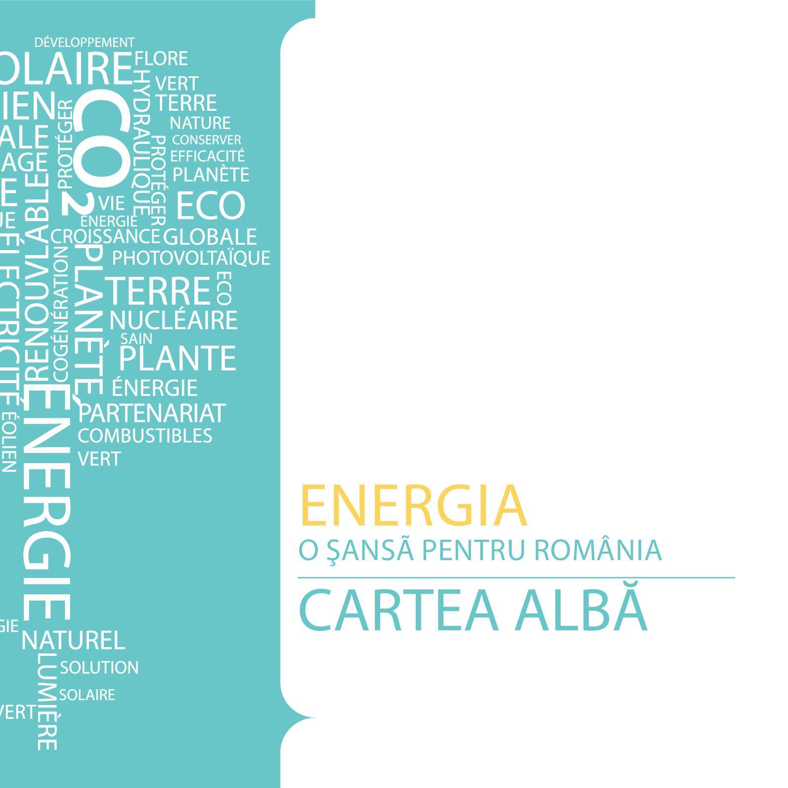 Calameo Cartea Alba A Energiei 2011