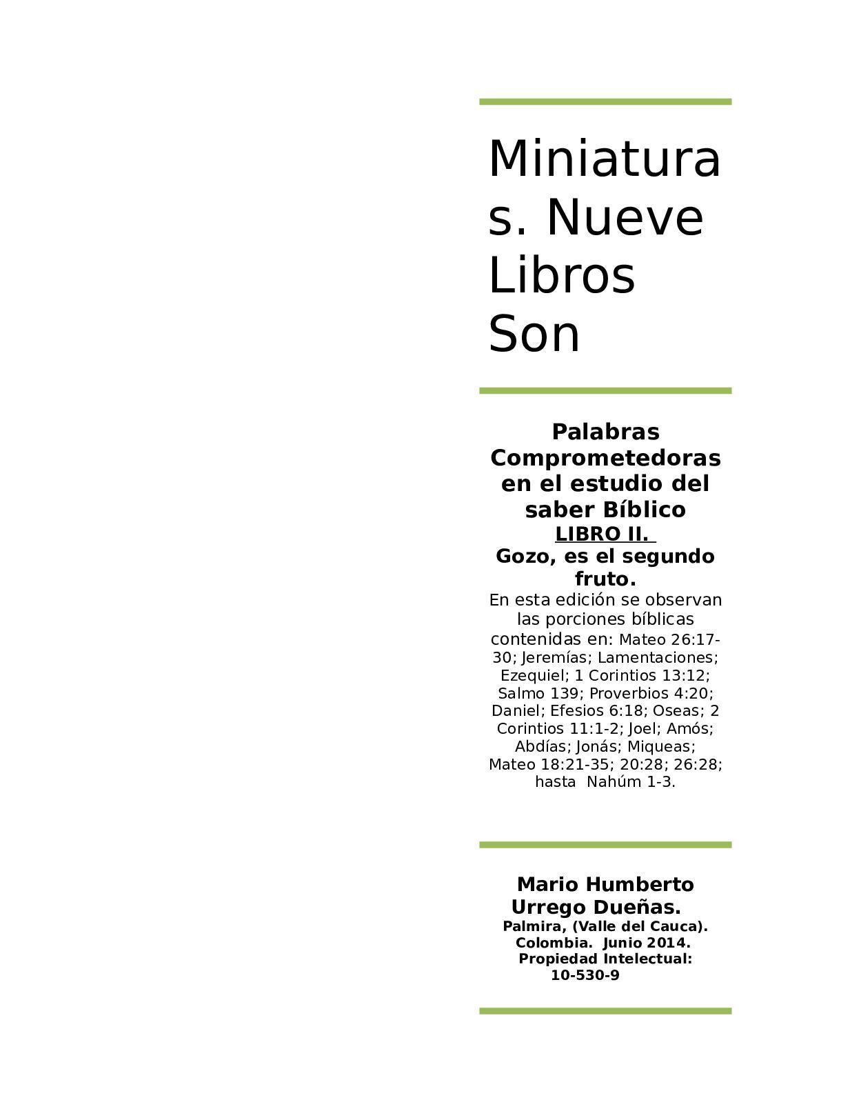 Calaméo Miniaturas Libro Ii Gozo