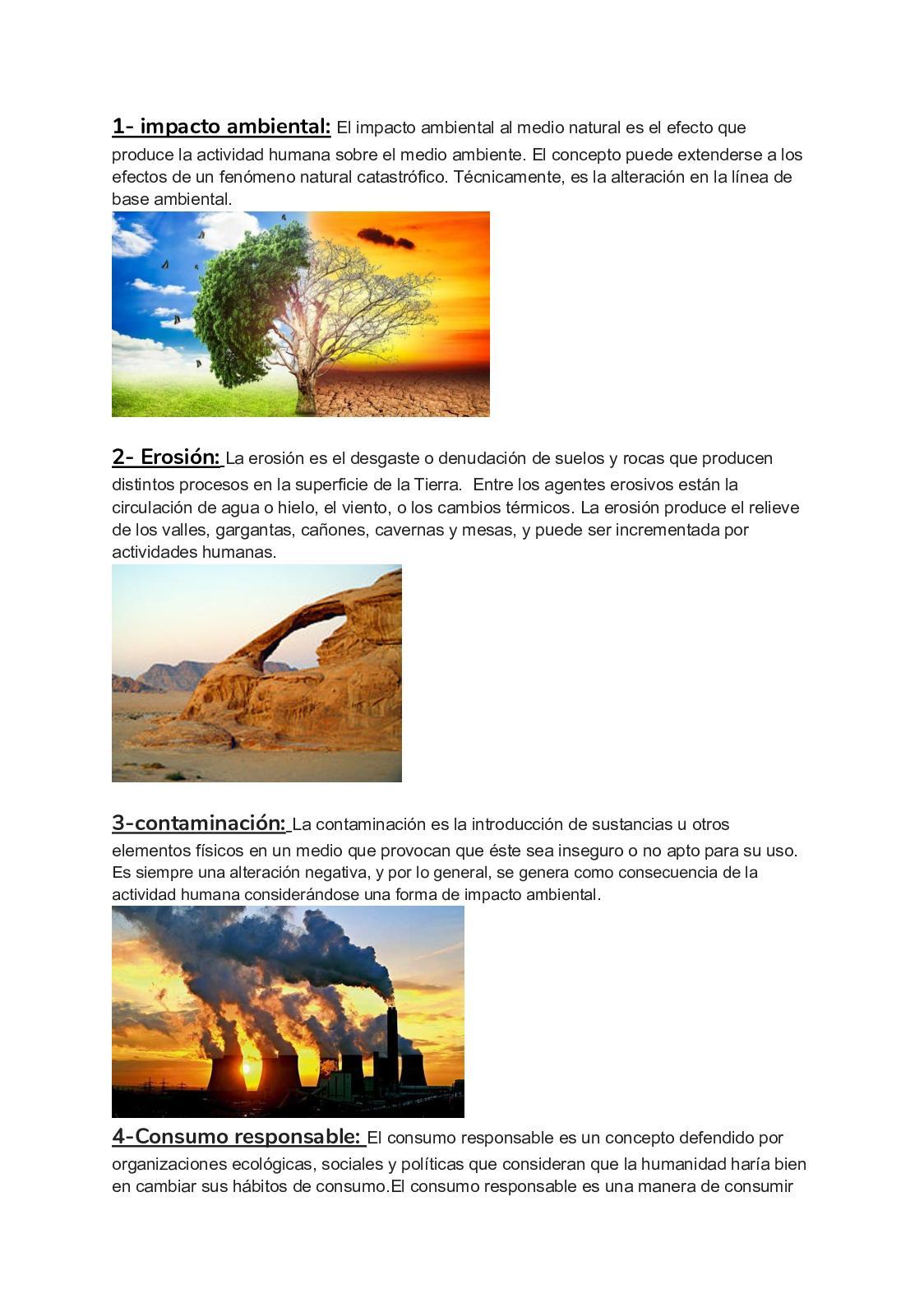 Calaméo Impacto Ambiental