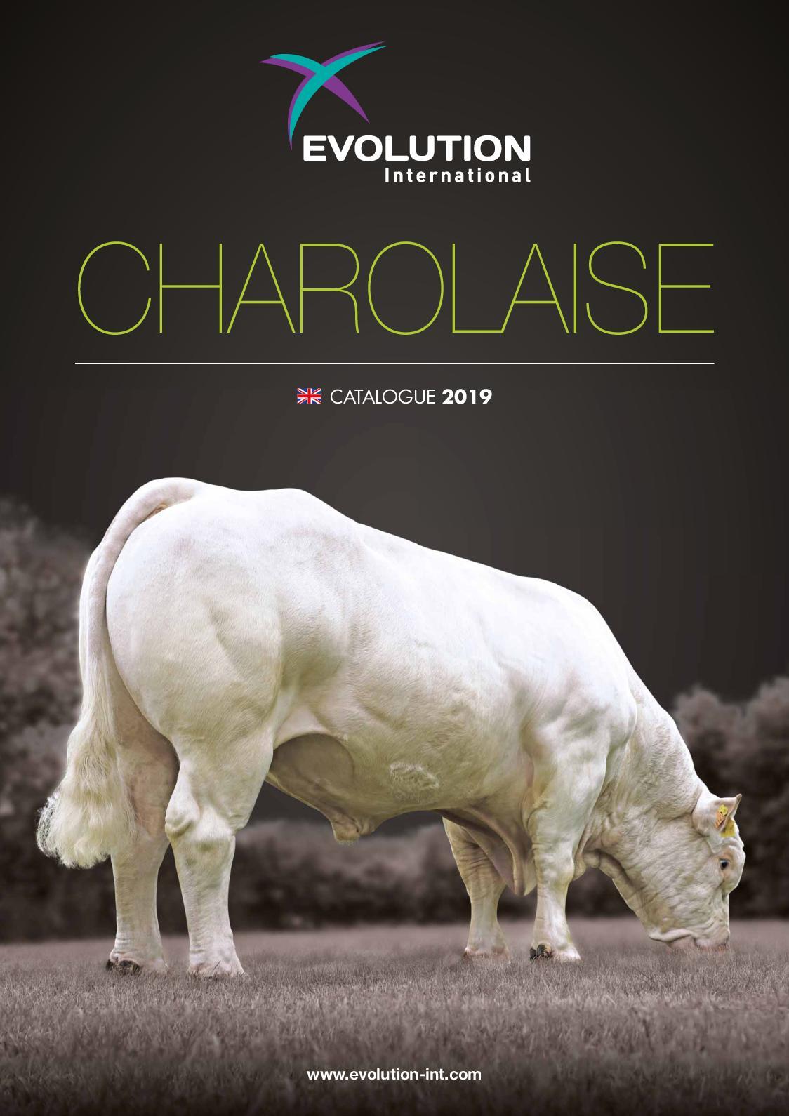 Charolaise 2019 EN
