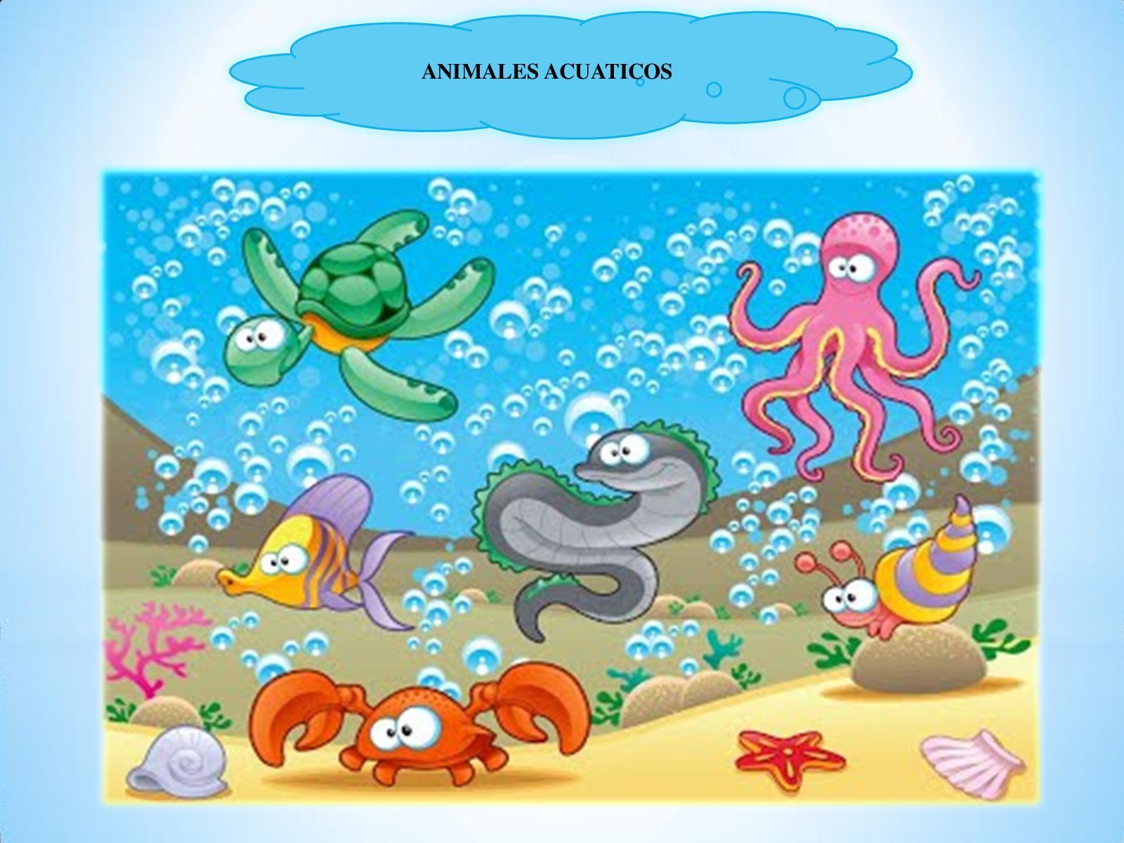 Calaméo Los Animales Acuaticos Ppa Semana 14 Socializacion
