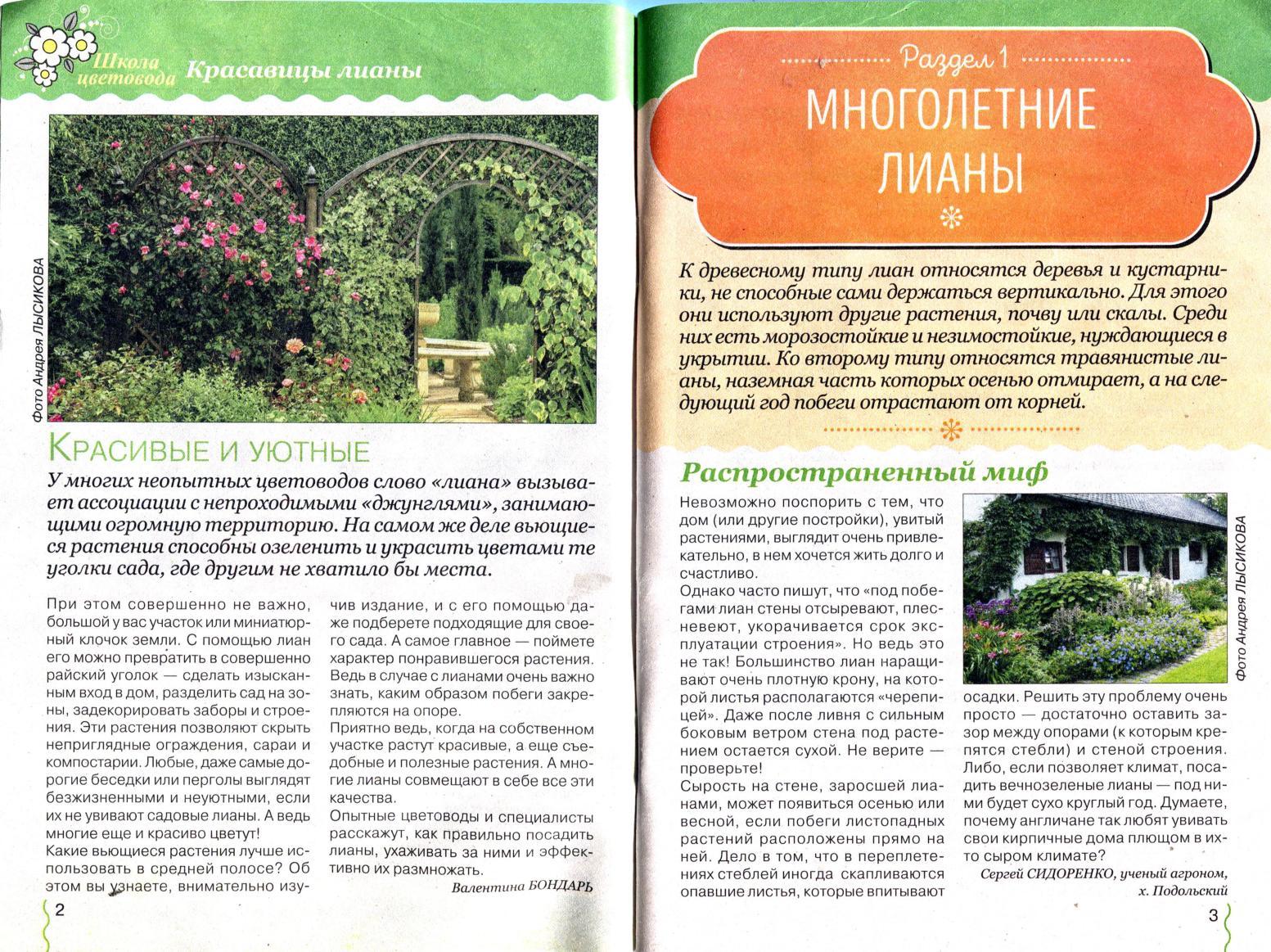 4 фото 1 слово ответы 301-350 - Stevsky.ru - обзоры смартфонов ... | 1163x1553