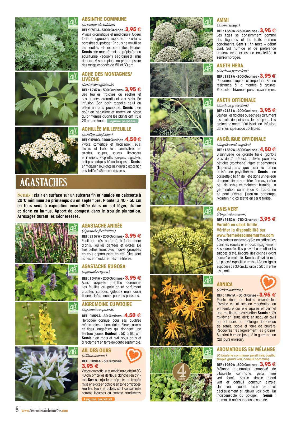 Que Planter En Octobre Sous Serre catalogue 2019 - calameo downloader