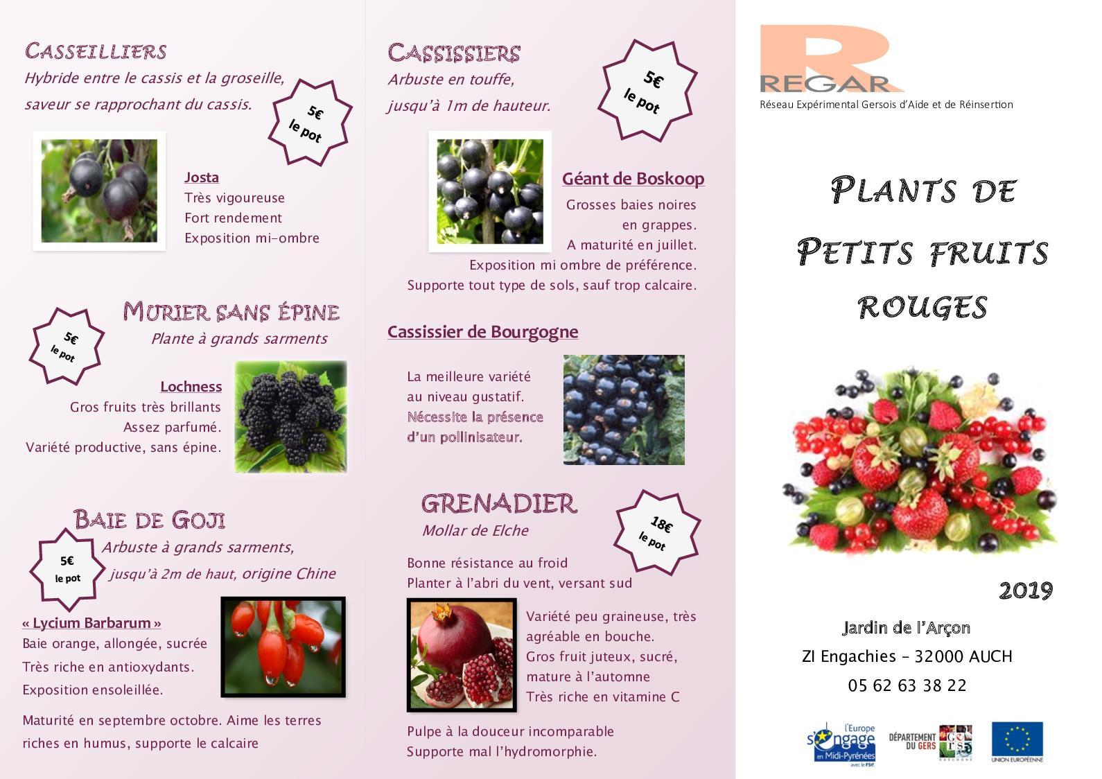 Arbuste Pour Terrain Calcaire calaméo - plaquette petits fruits 2019