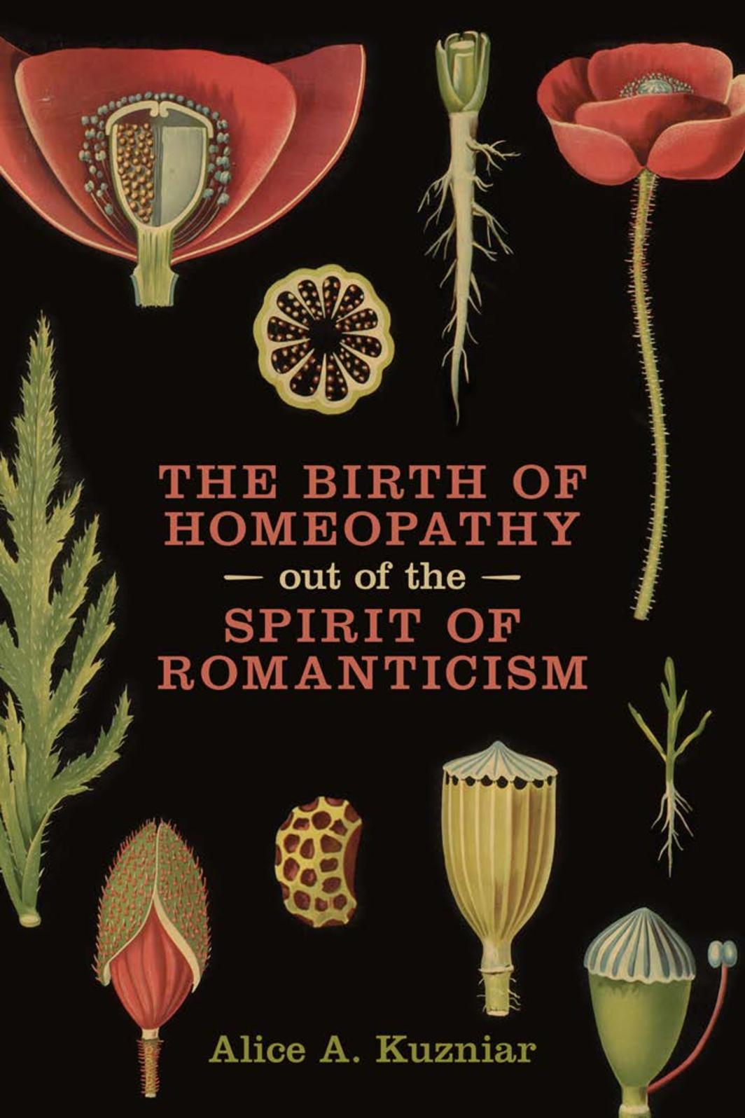 Birth Of Homeopathy Out Of The Spirit Of Romanticism 2017