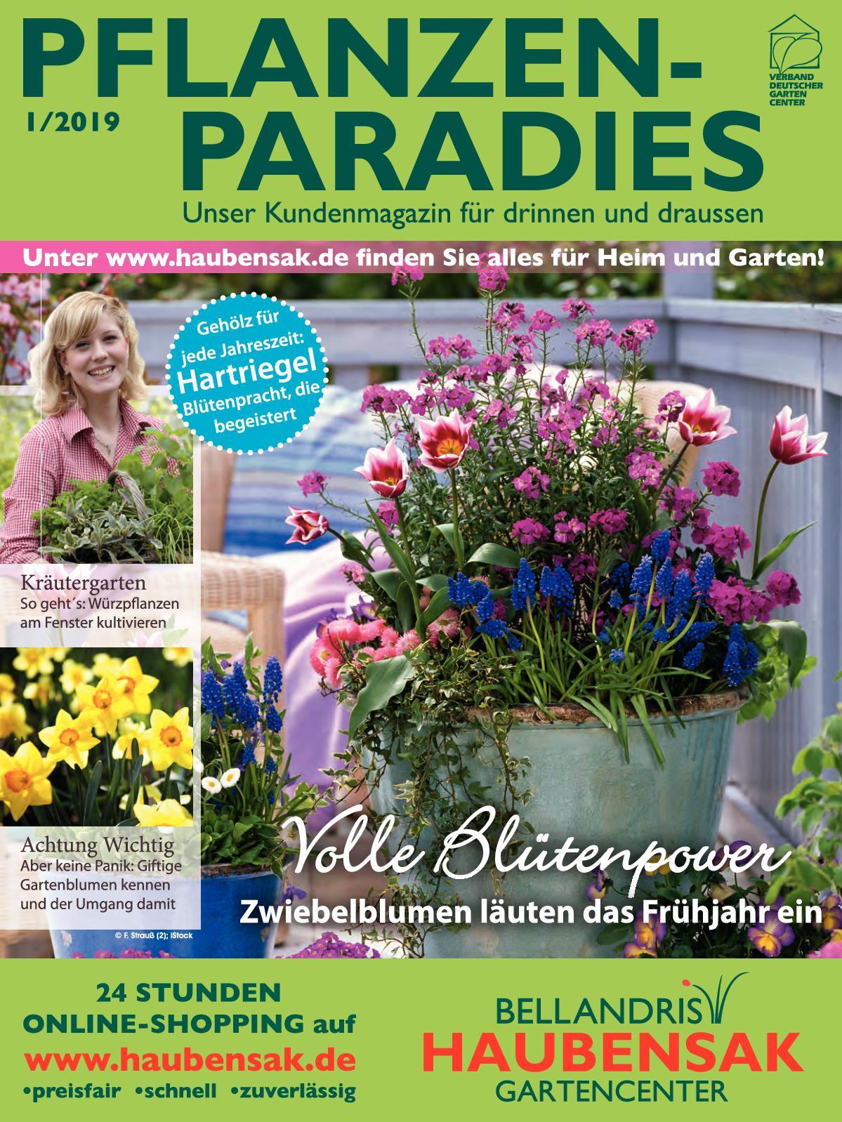 """rund braun Pflanz Korb /""""Rustikal/"""" aus Weide Blumen Pflanzen Topf Kübel Garten"""