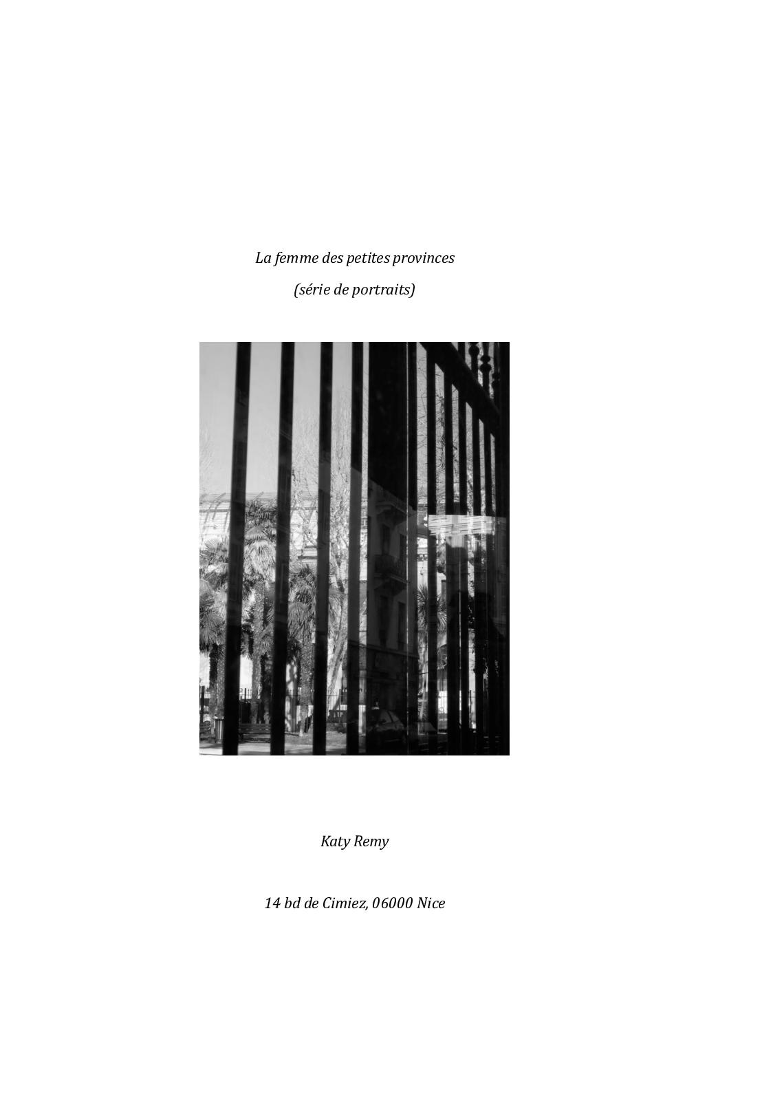 VAN HOUSSE DE COUSSIN option Insérer Coussin VOITURE DRÔLE CONDUITE Citation nu