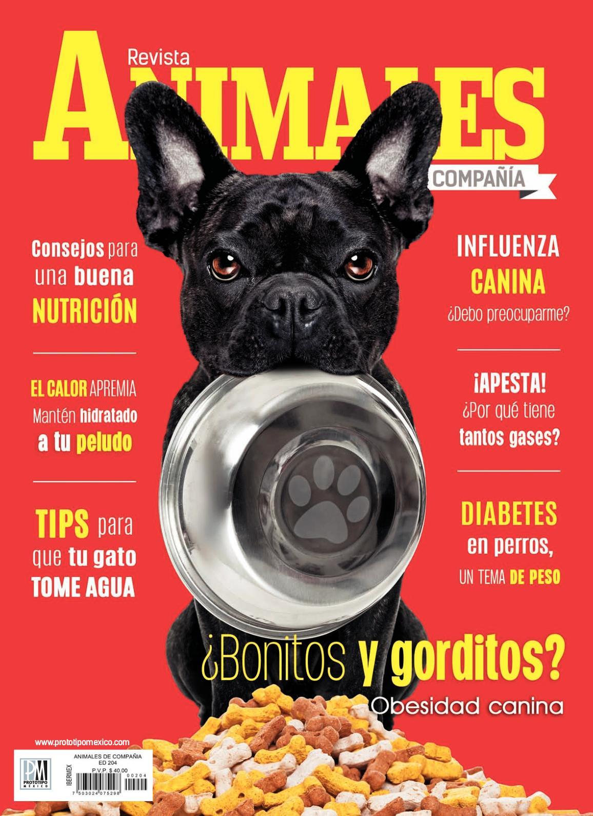 terapia larval buenas pautas diabetes
