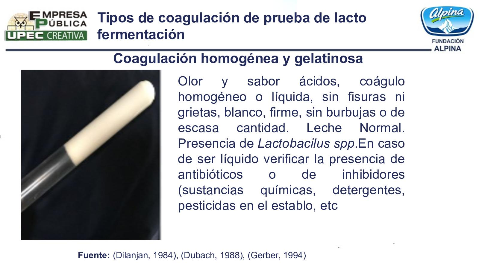 Tipos De Coagulación
