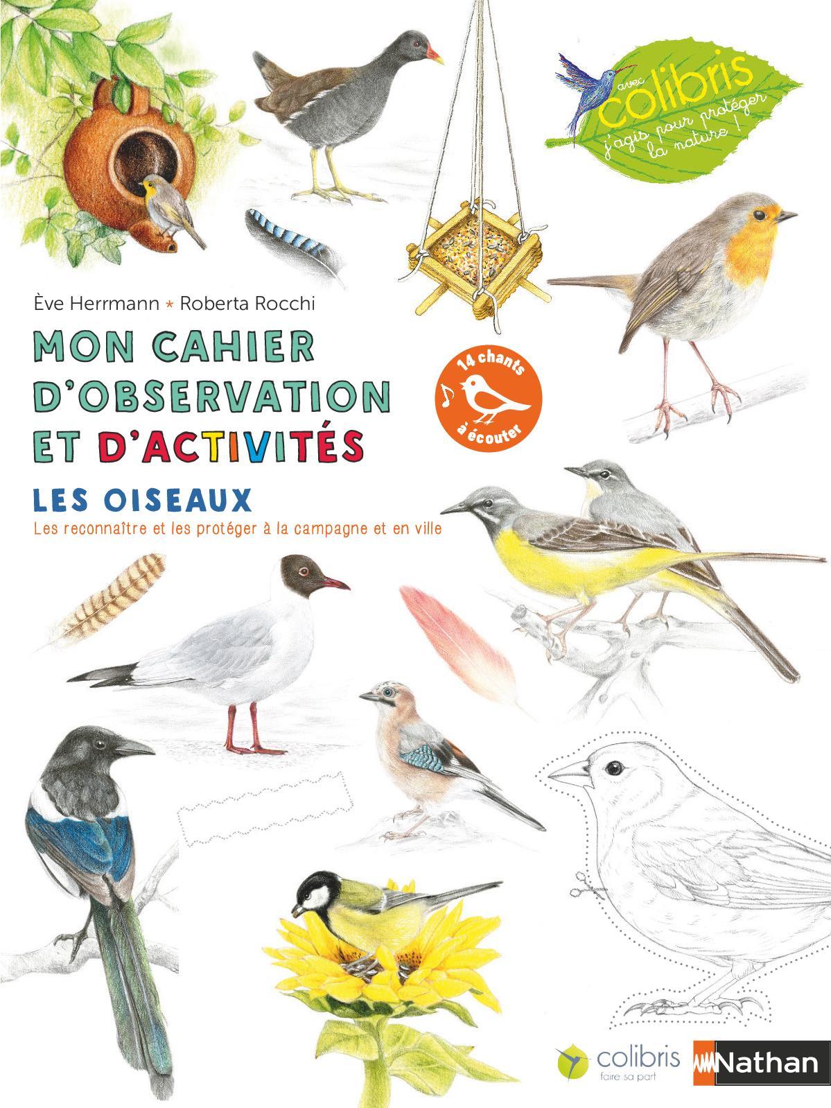 Mon cahier d'observation et d'activités : Les oiseaaux