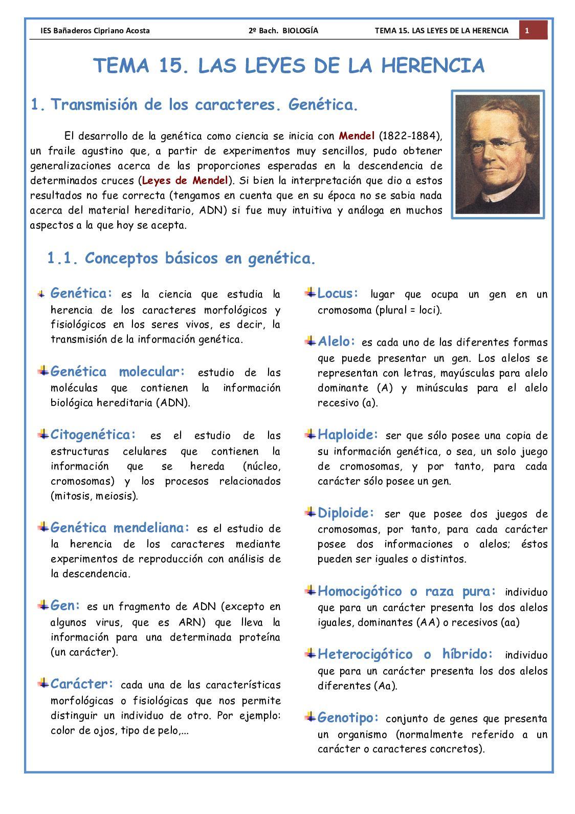 T 15 Genetica 18 19