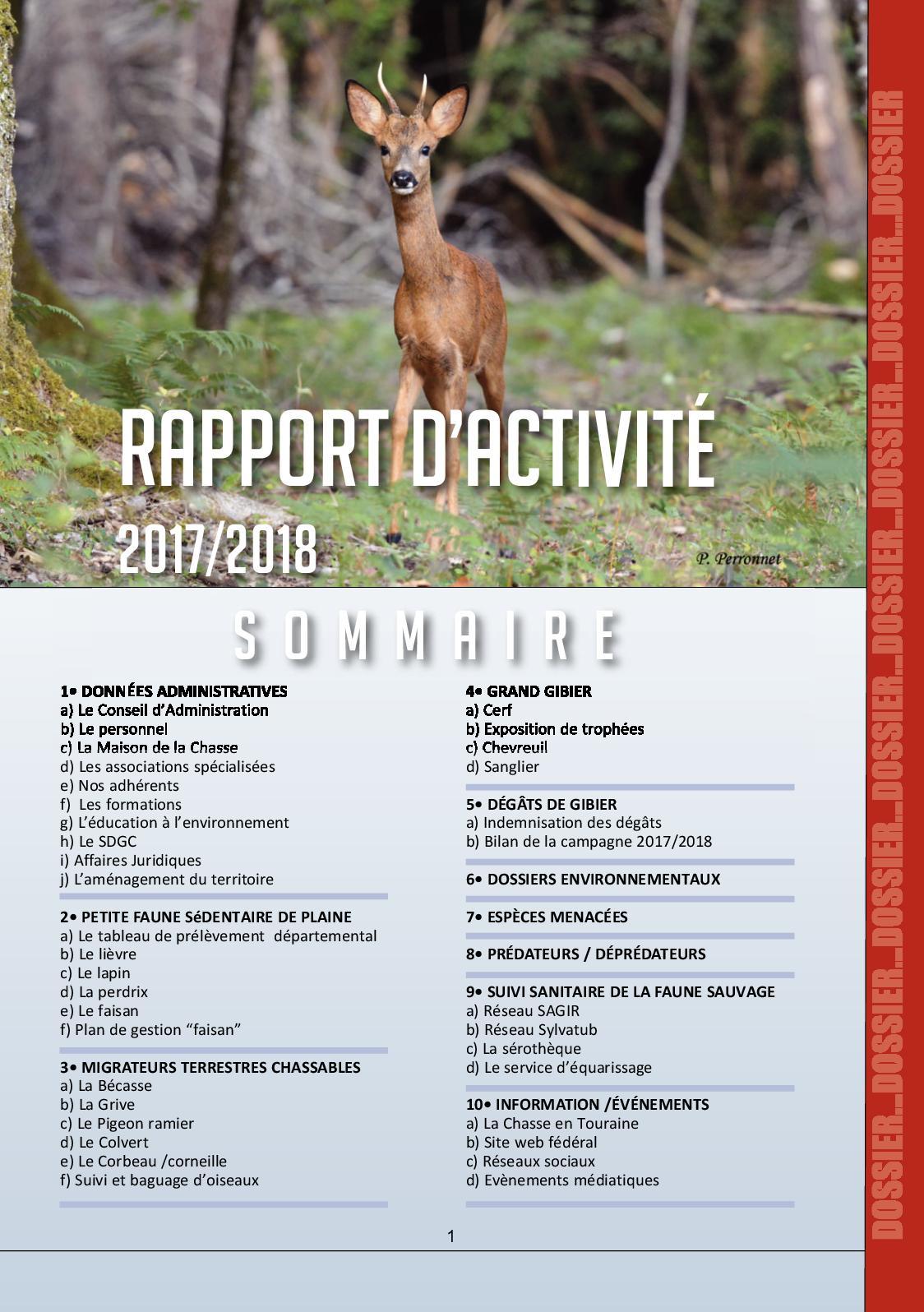 beaucoup de choix de belle couleur qualité et quantité assurées Calaméo - Rapport d'activité 2017/2018