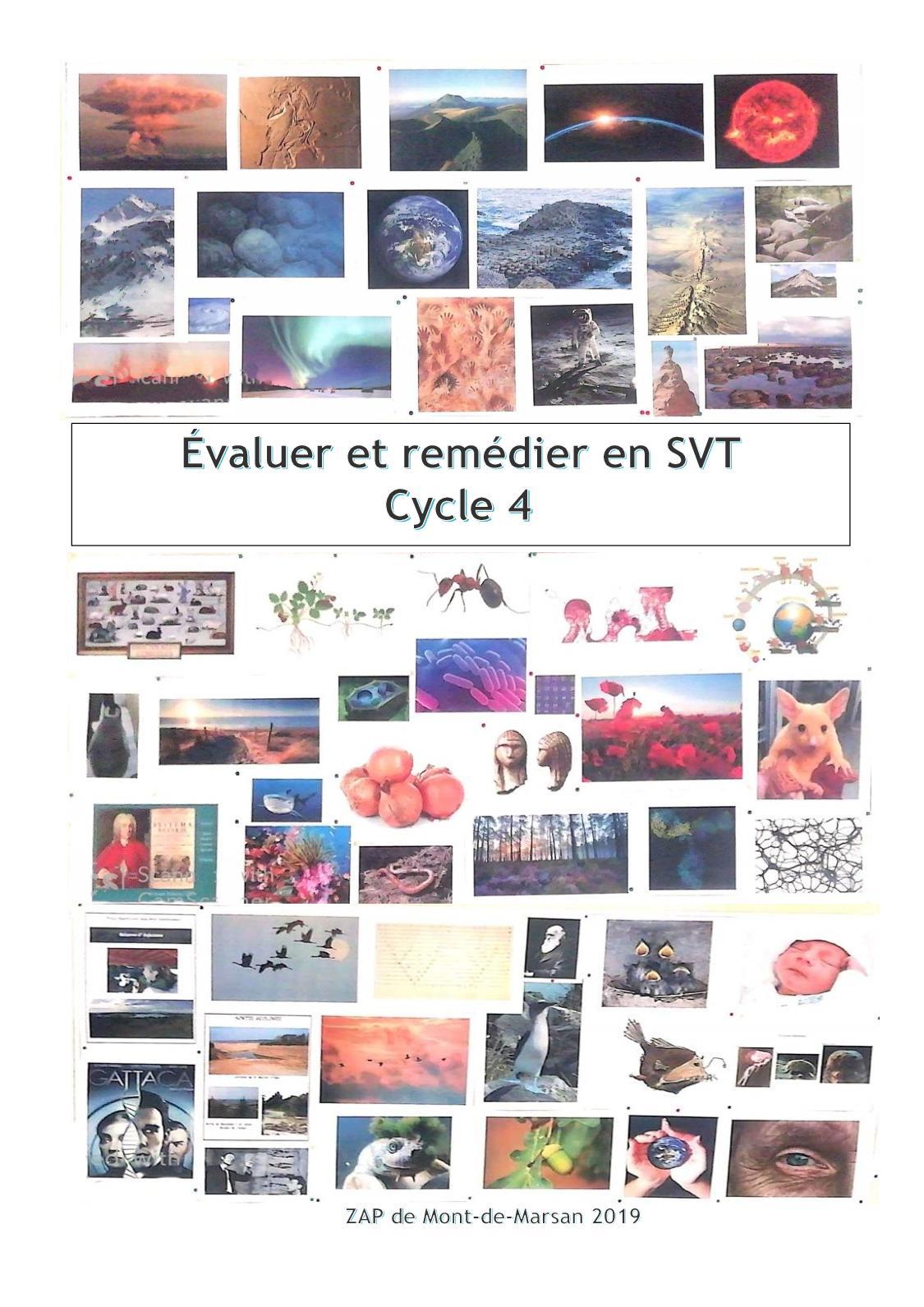 Evaluer et remédier en SVT cycle 4
