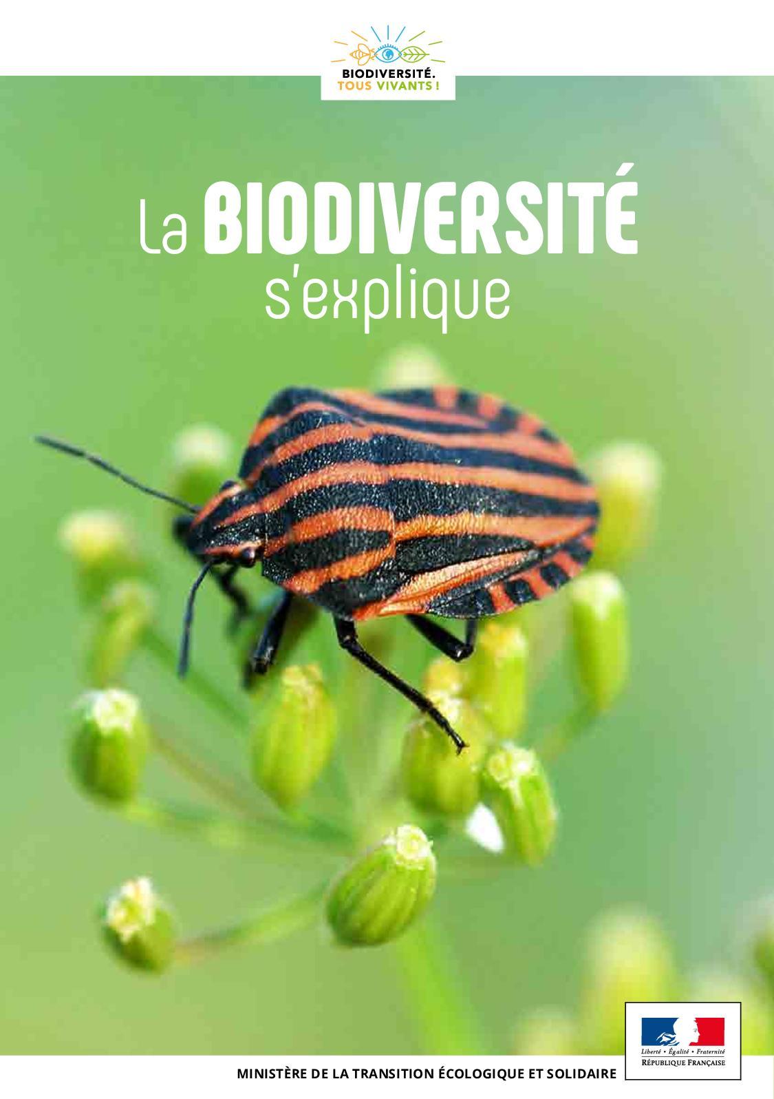 La biodiversité s'explique