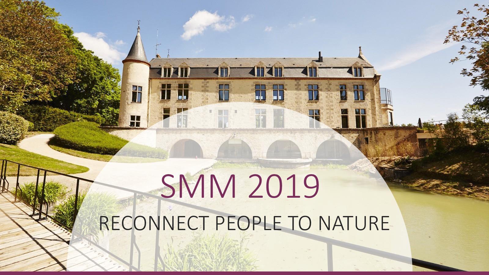 SMM 2019