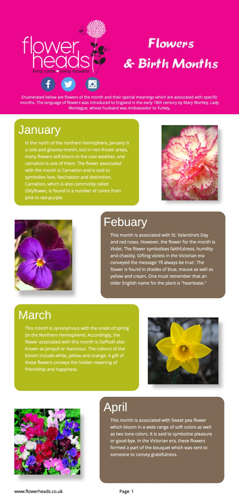 Calameo Flowers Birth Months