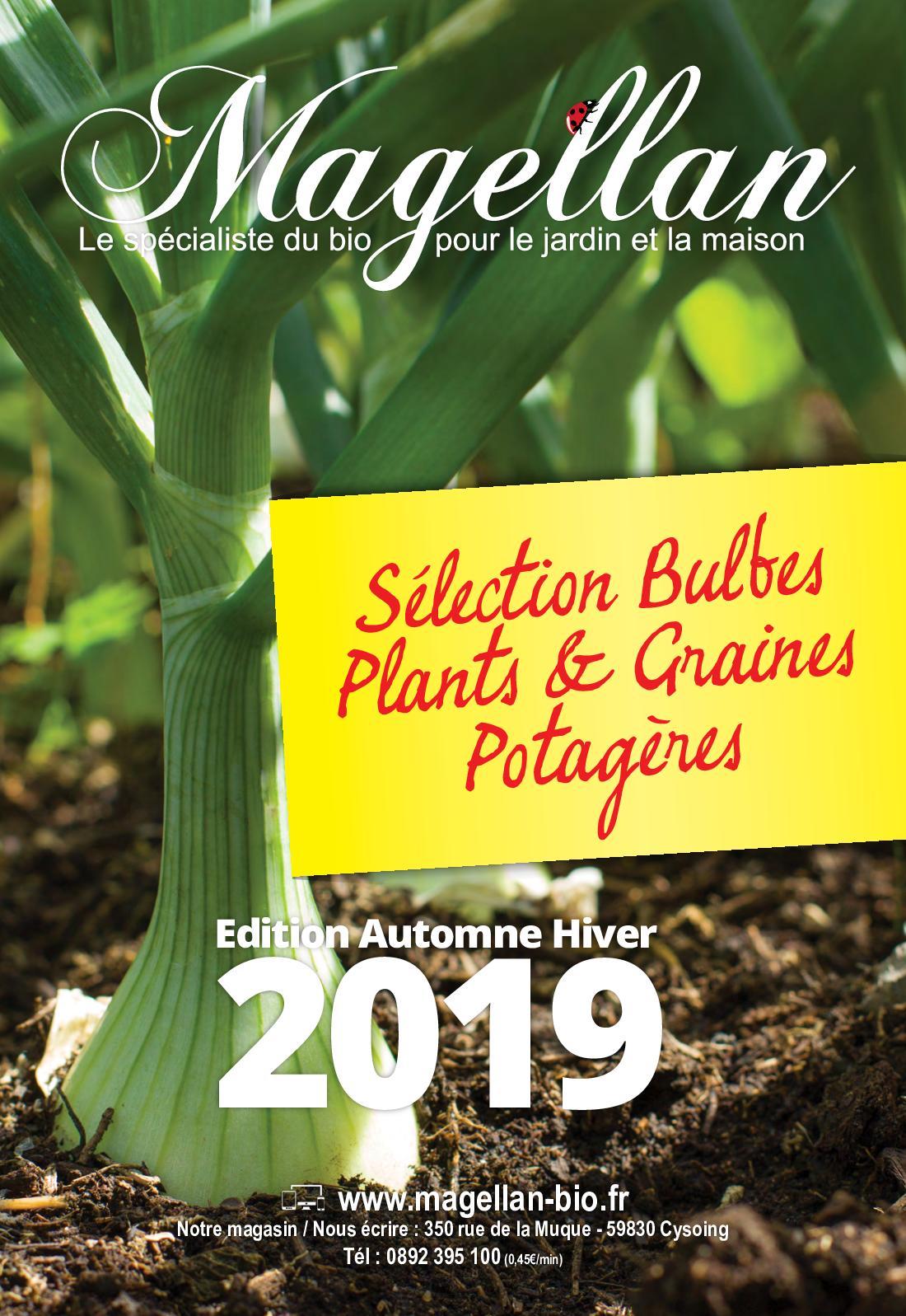 Repiquer Plants Oignons Blancs calaméo - bulbes, plants, graines potagères et engrais verts.