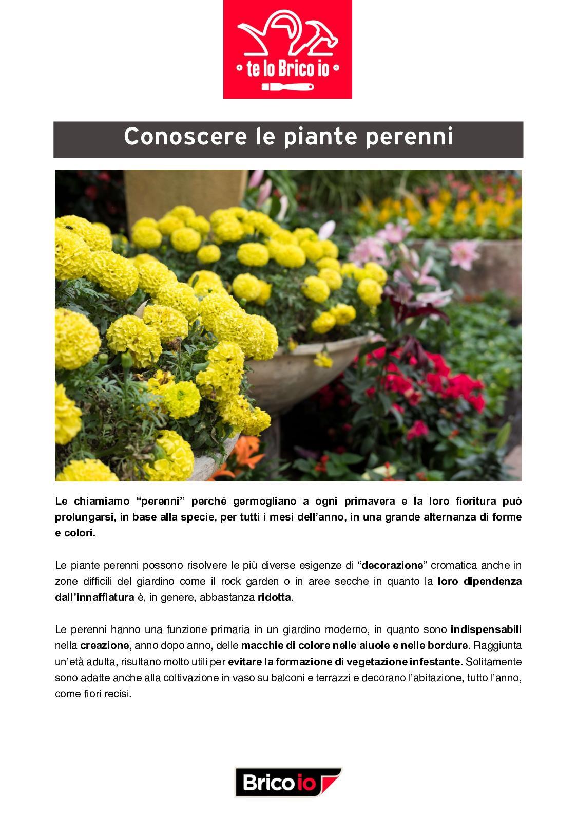 Piante Perenni Per Aiuole calaméo - conoscere le piante perenni
