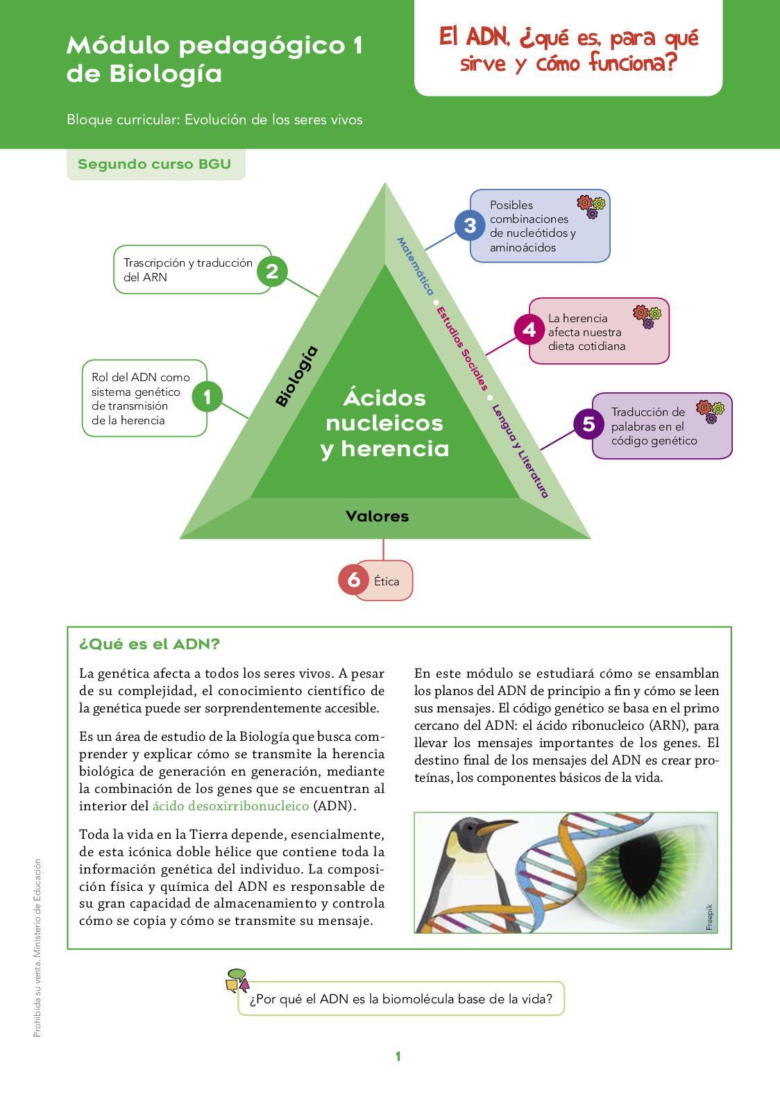 Calaméo Biologia 2 Modulo 1