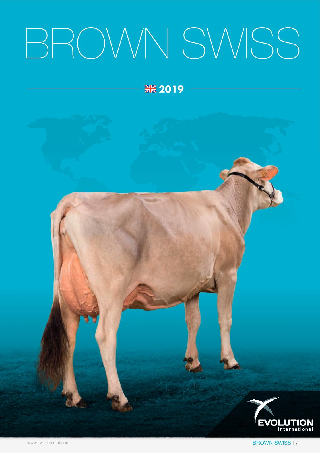 Brown Swiss - EN 2019 - Evolution International