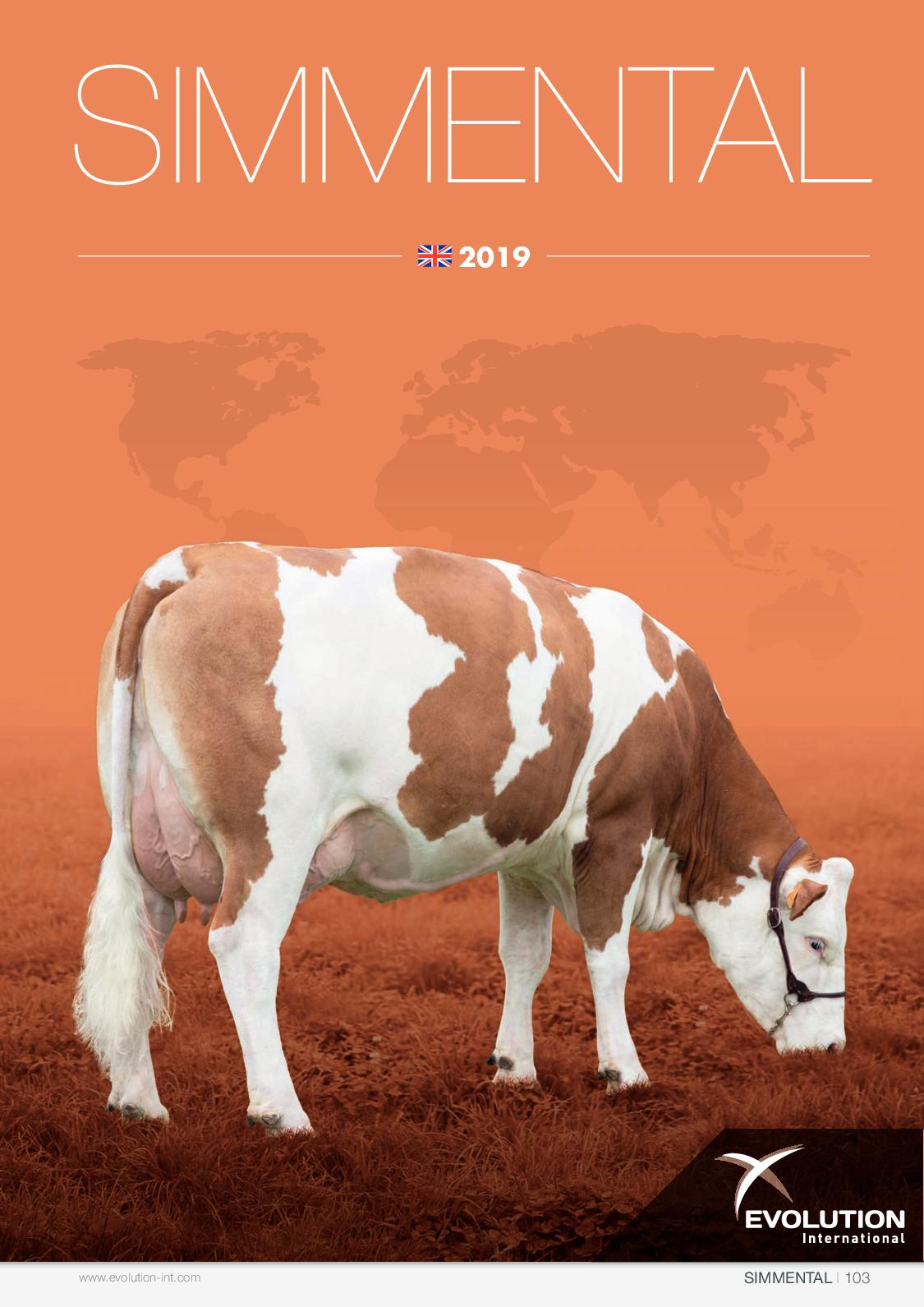 Simmental - EN 2019 - Evolution International