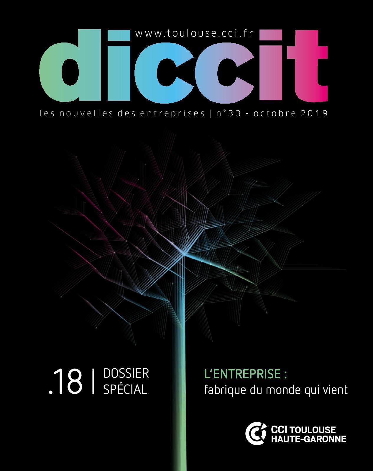 Jardinerie Pas Cher Toulouse calaméo - diccit n°33 - octobre 2019