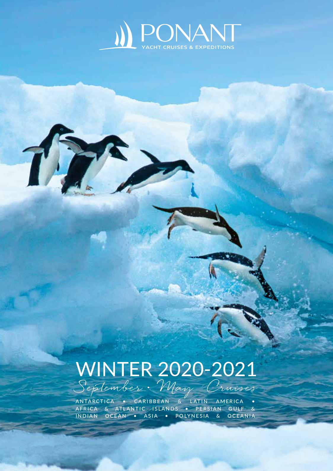 Penguins 2020 Wildlife Calendar 15/% OFF MULTI ORDERS!