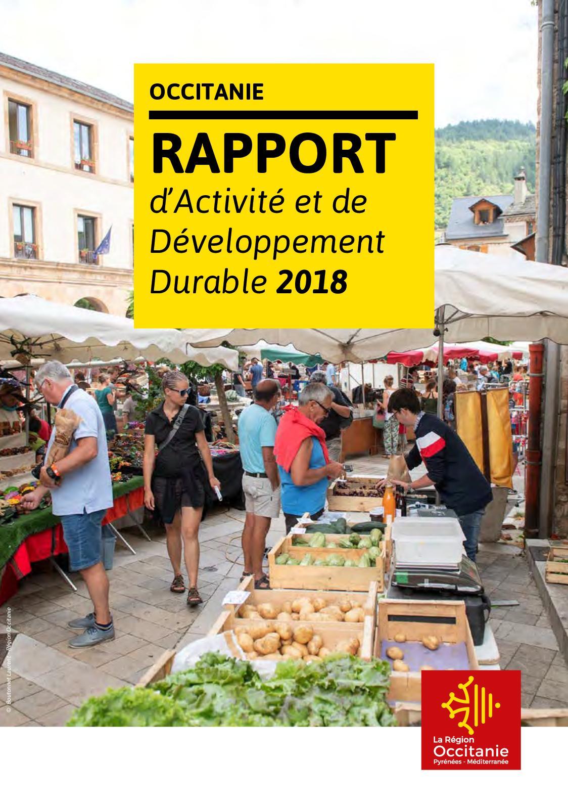 foto de Calaméo - Rapport d'activité et de développement durable 2018