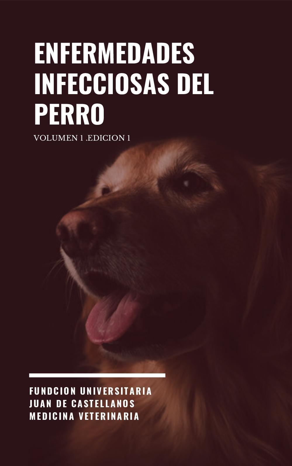 uretritis granulomatosa canina