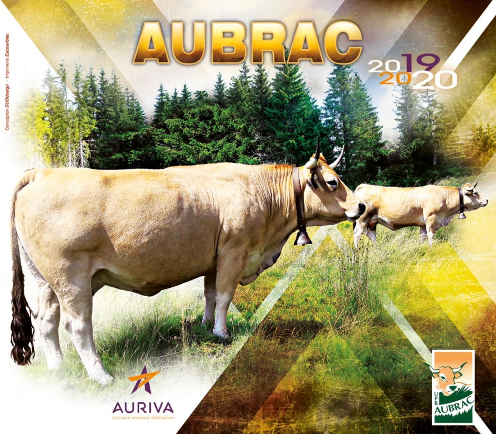 Catalogue Aubrac 2019-2020